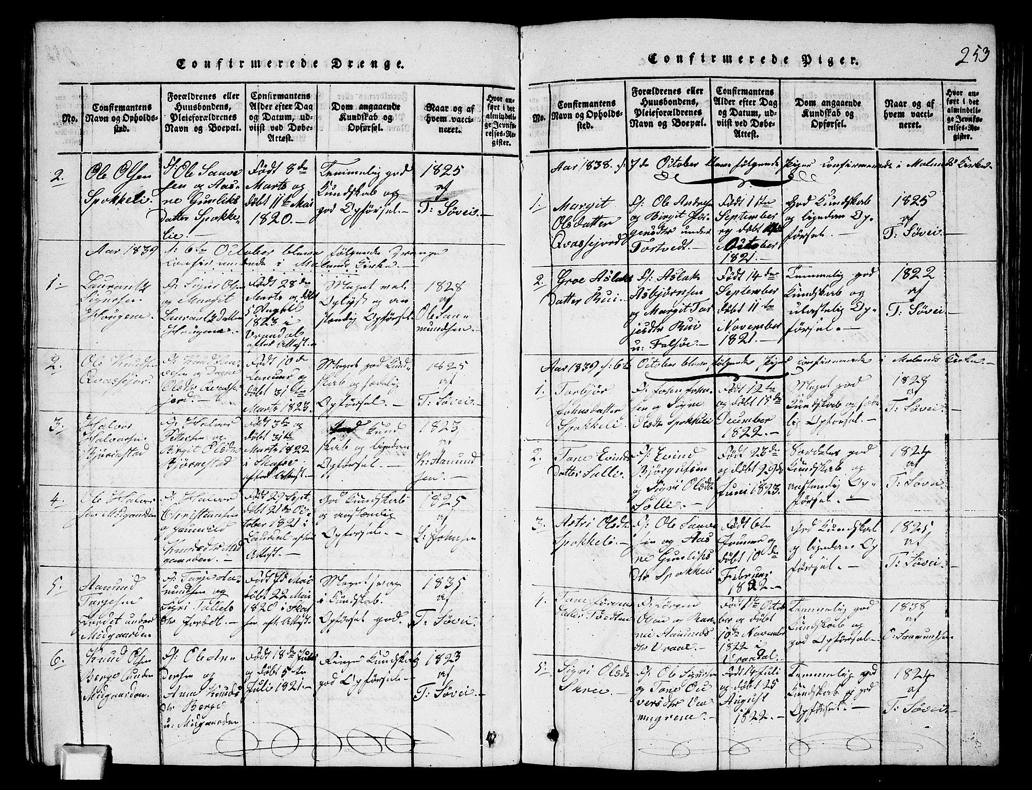SAKO, Fyresdal kirkebøker, G/Ga/L0003: Klokkerbok nr. I 3, 1815-1863, s. 253