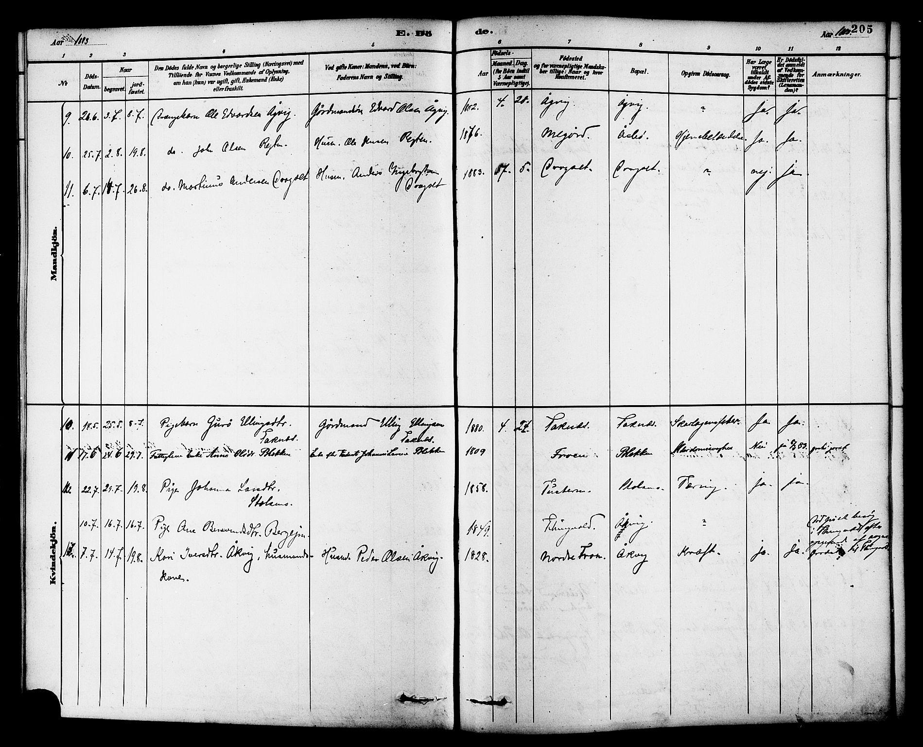 SAT, Ministerialprotokoller, klokkerbøker og fødselsregistre - Møre og Romsdal, 576/L0885: Ministerialbok nr. 576A03, 1880-1898, s. 205