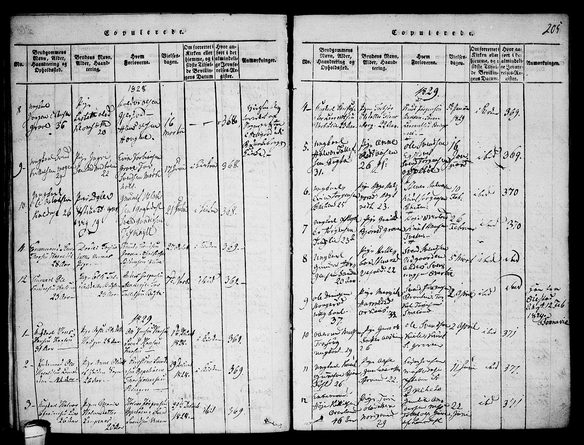 SAKO, Seljord kirkebøker, F/Fa/L0010: Ministerialbok nr. I 10, 1815-1831, s. 205
