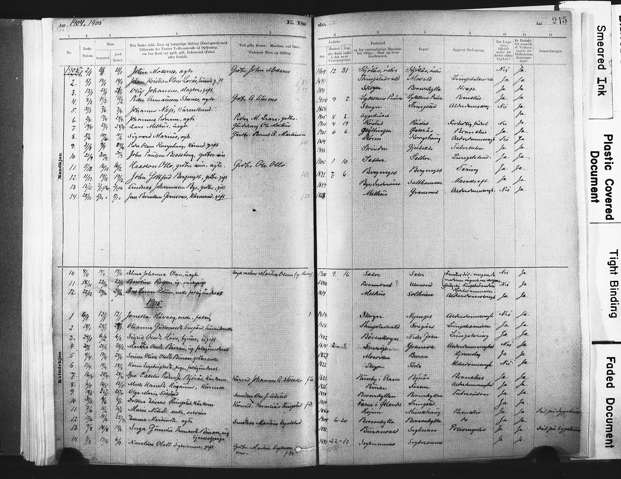 SAT, Ministerialprotokoller, klokkerbøker og fødselsregistre - Nord-Trøndelag, 721/L0207: Ministerialbok nr. 721A02, 1880-1911, s. 245