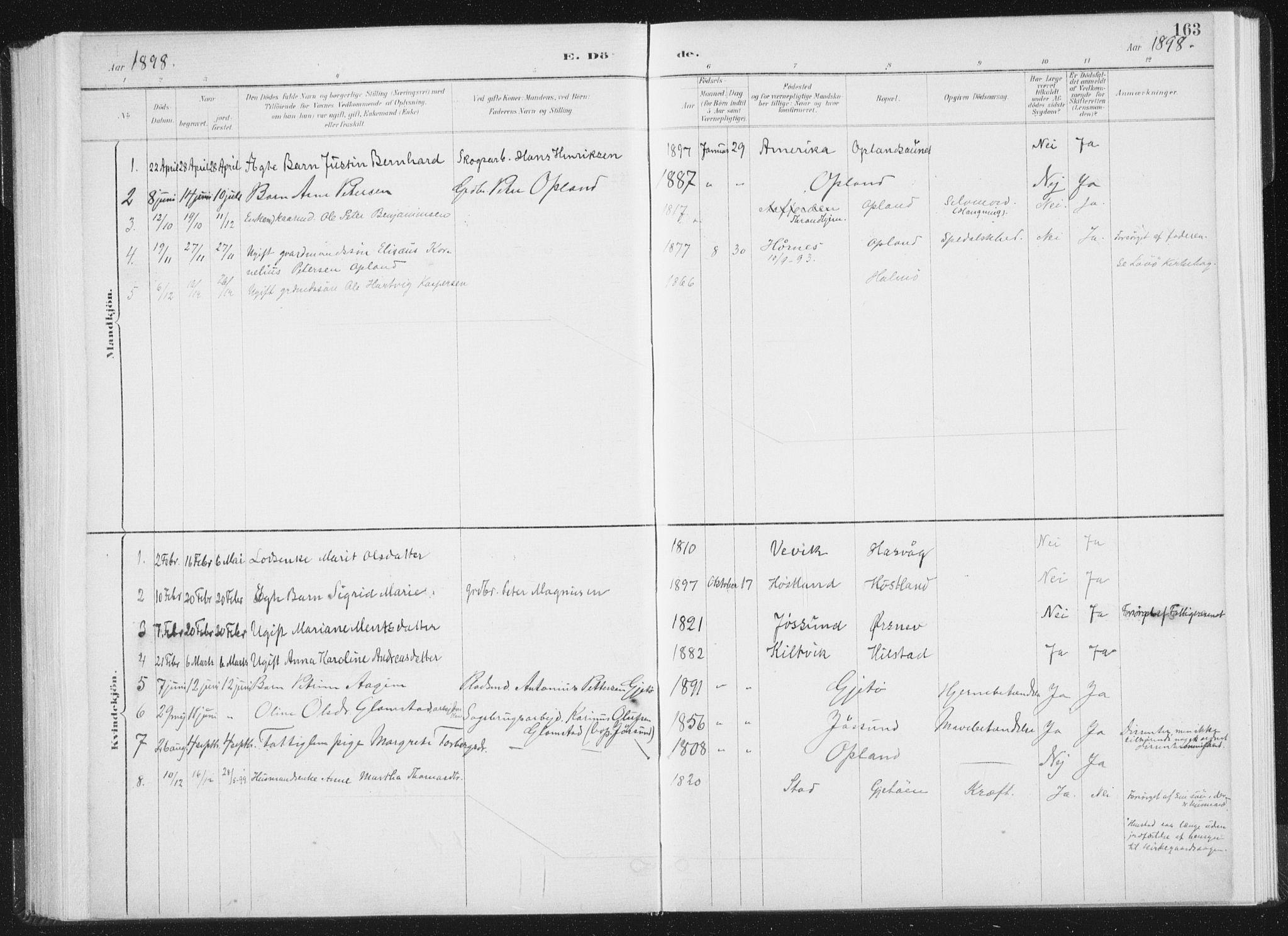 SAT, Ministerialprotokoller, klokkerbøker og fødselsregistre - Nord-Trøndelag, 771/L0597: Ministerialbok nr. 771A04, 1885-1910, s. 163