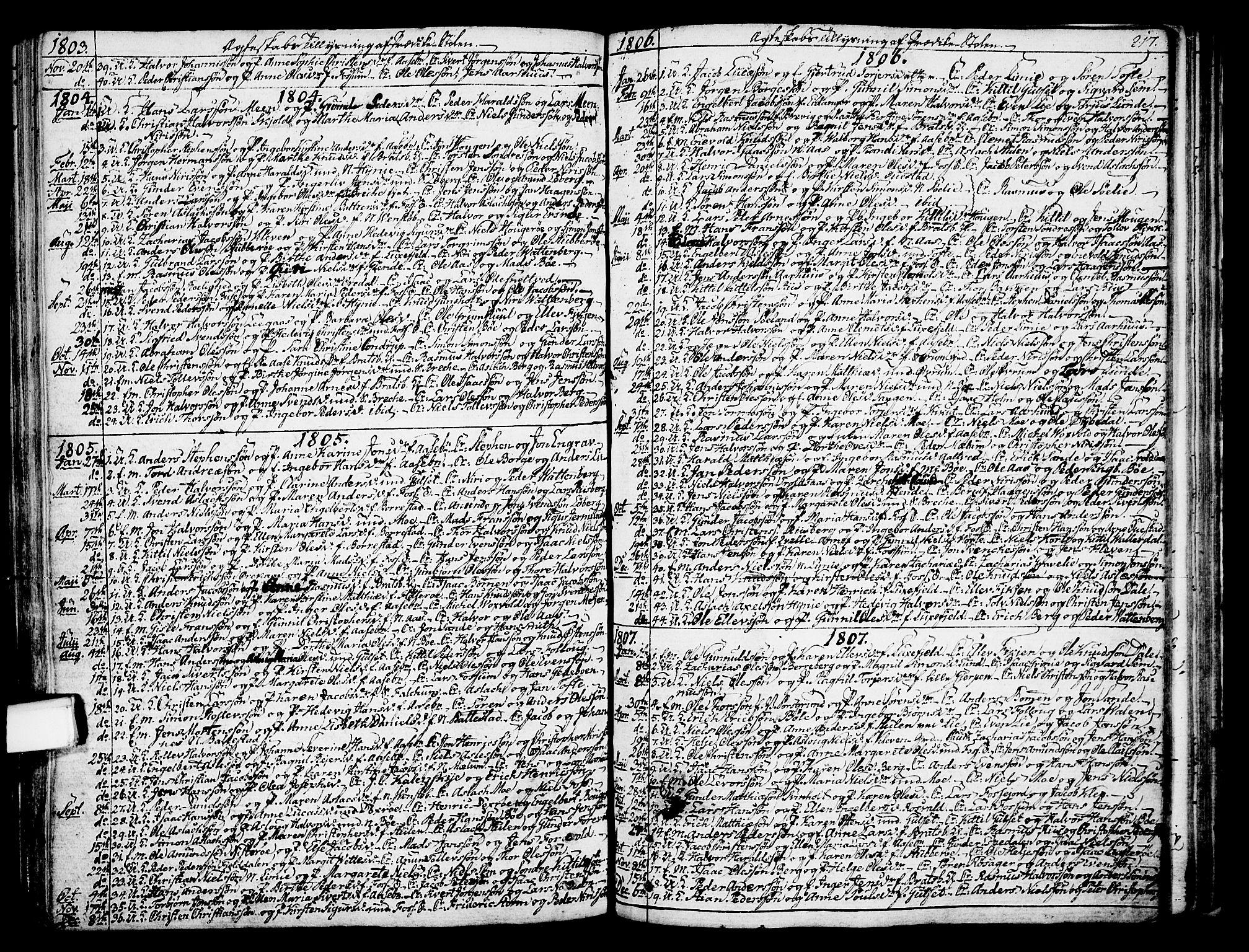 SAKO, Gjerpen kirkebøker, F/Fa/L0003: Ministerialbok nr. 3, 1796-1814, s. 217