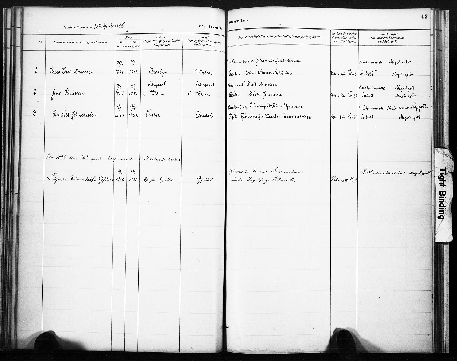 SAKO, Lårdal kirkebøker, F/Fb/L0002: Ministerialbok nr. II 2, 1887-1918, s. 43