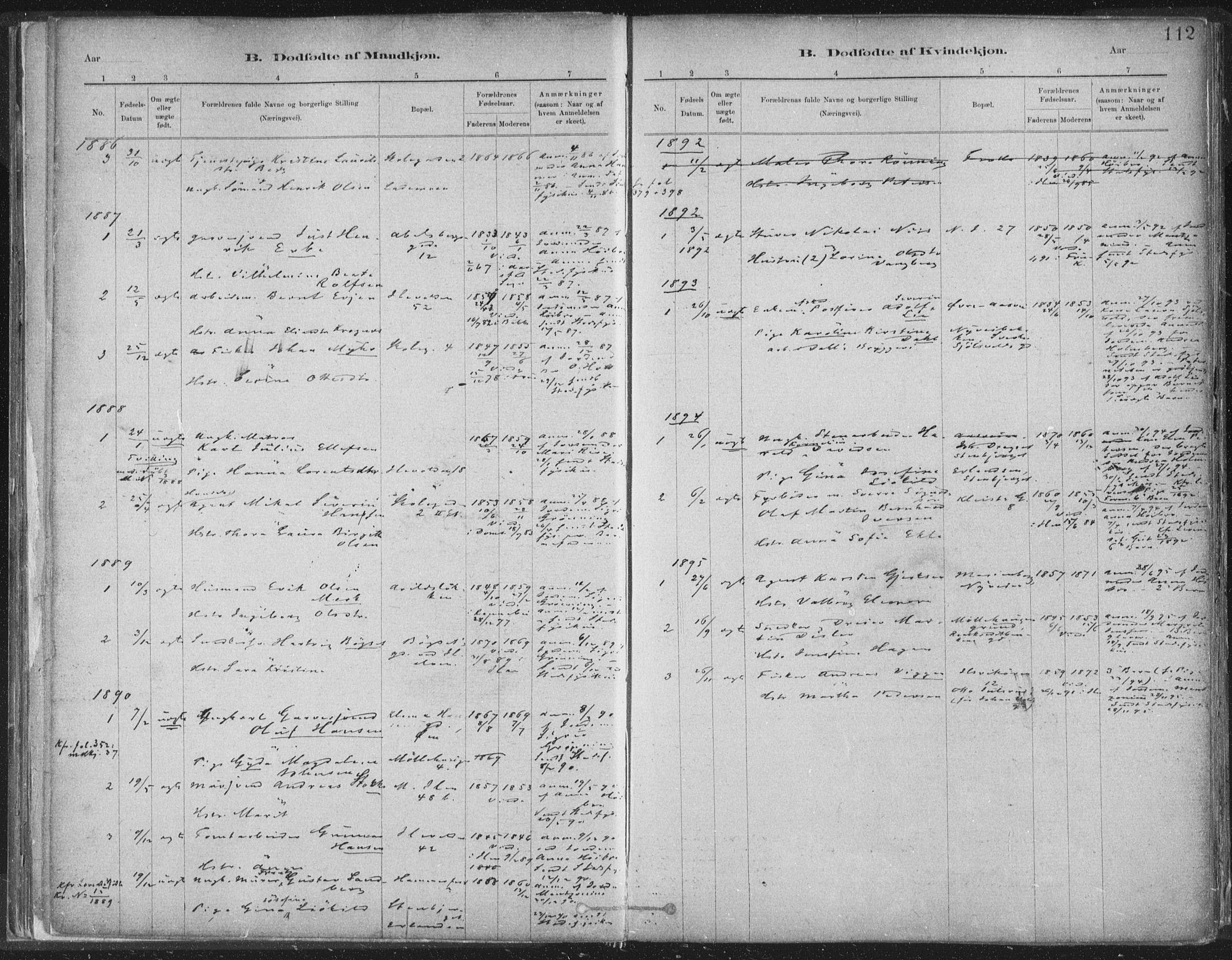 SAT, Ministerialprotokoller, klokkerbøker og fødselsregistre - Sør-Trøndelag, 603/L0162: Ministerialbok nr. 603A01, 1879-1895, s. 112