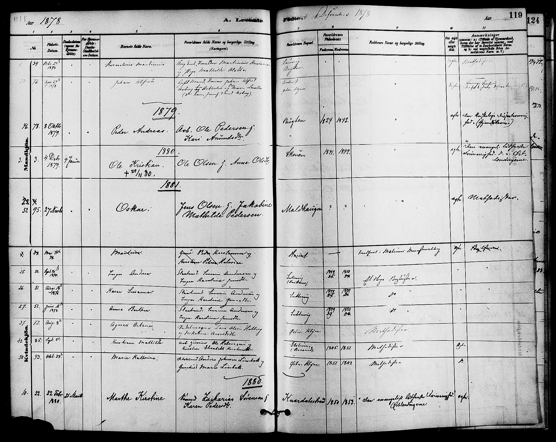 SAKO, Solum kirkebøker, F/Fa/L0009: Ministerialbok nr. I 9, 1877-1887, s. 119