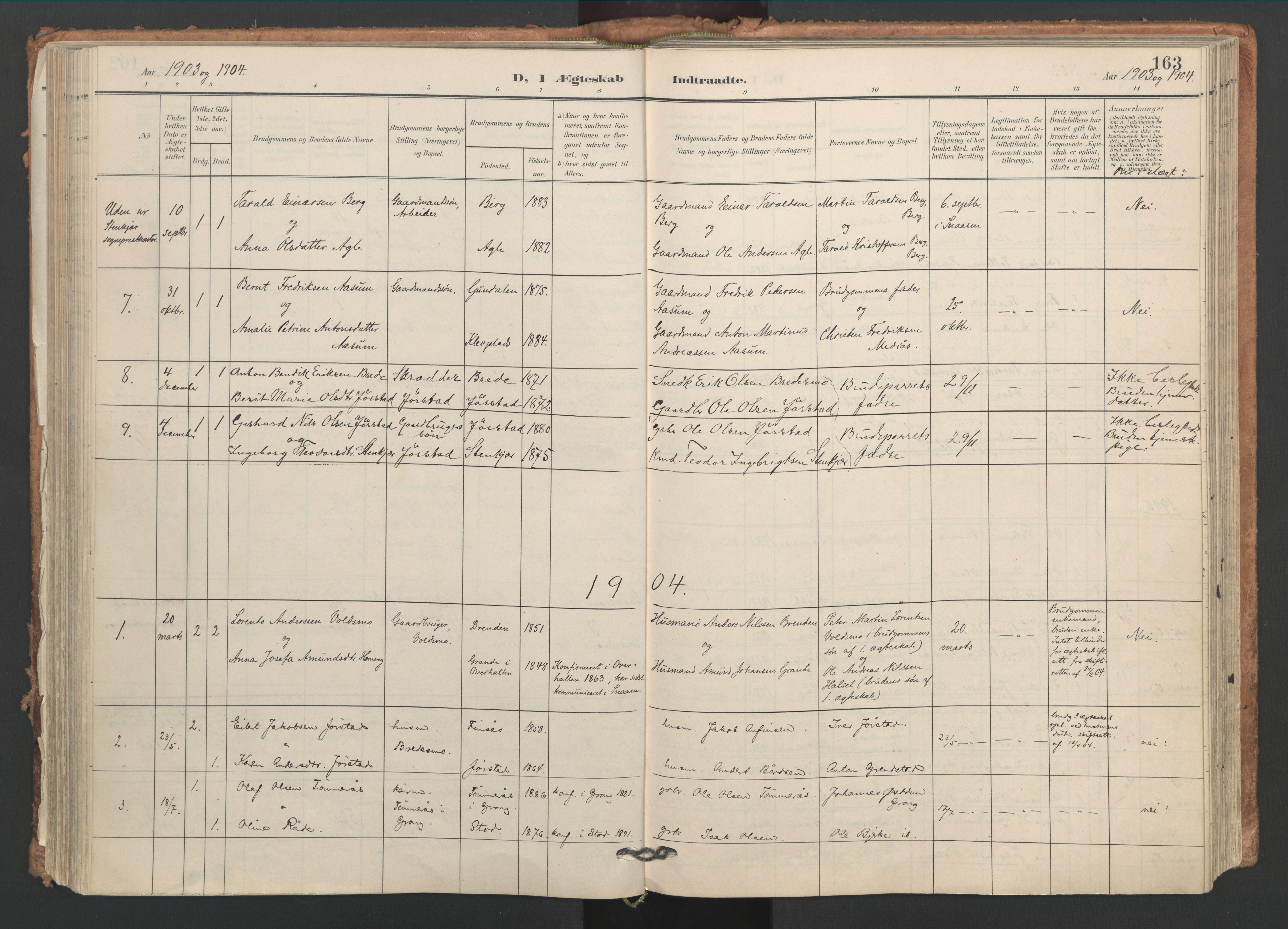 SAT, Ministerialprotokoller, klokkerbøker og fødselsregistre - Nord-Trøndelag, 749/L0477: Ministerialbok nr. 749A11, 1902-1927, s. 163