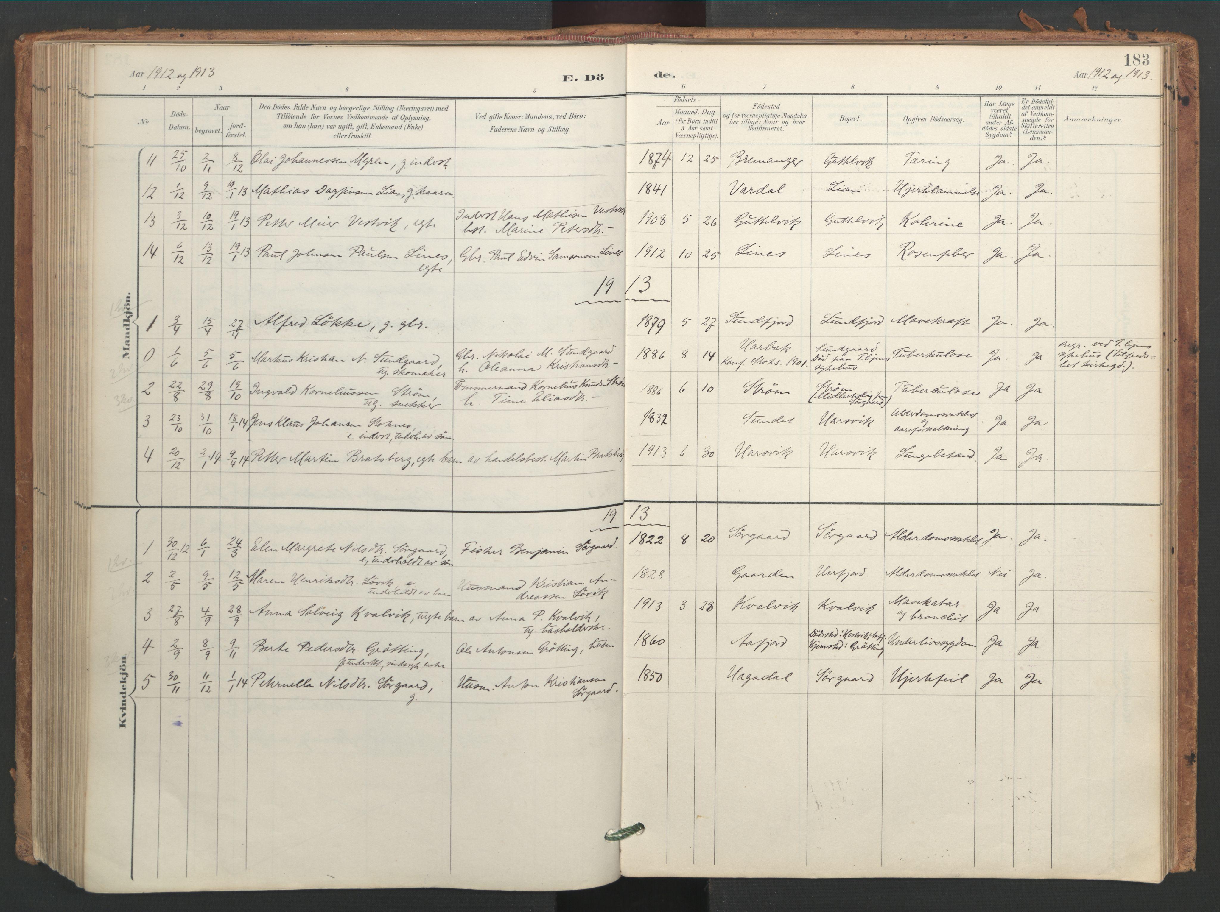 SAT, Ministerialprotokoller, klokkerbøker og fødselsregistre - Sør-Trøndelag, 656/L0693: Ministerialbok nr. 656A02, 1894-1913, s. 183