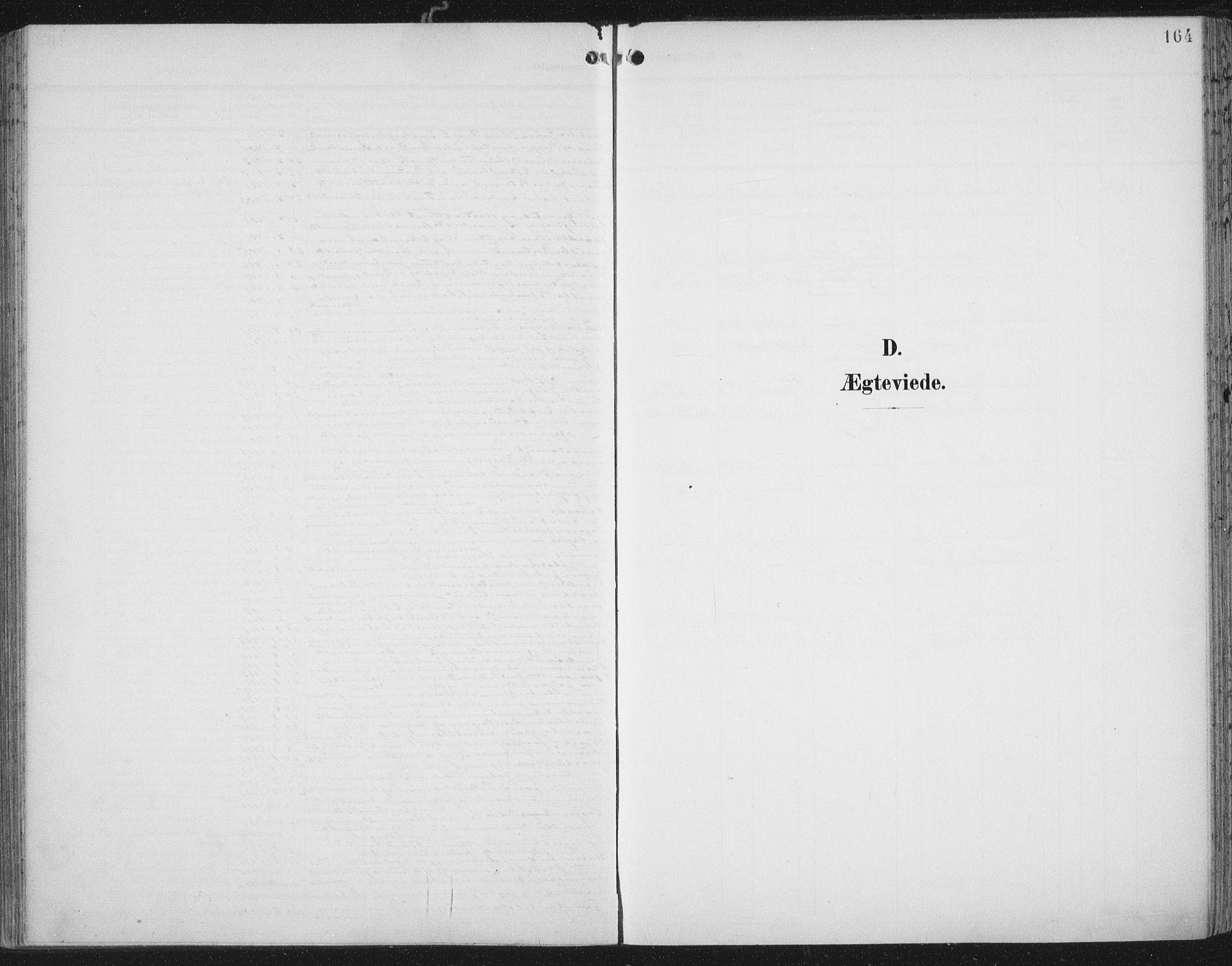 SAT, Ministerialprotokoller, klokkerbøker og fødselsregistre - Nord-Trøndelag, 701/L0011: Ministerialbok nr. 701A11, 1899-1915, s. 164