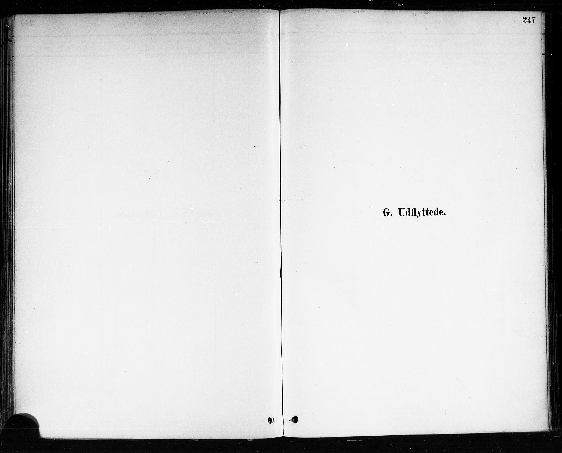 SAKO, Brevik kirkebøker, F/Fa/L0007: Ministerialbok nr. 7, 1882-1900, s. 247