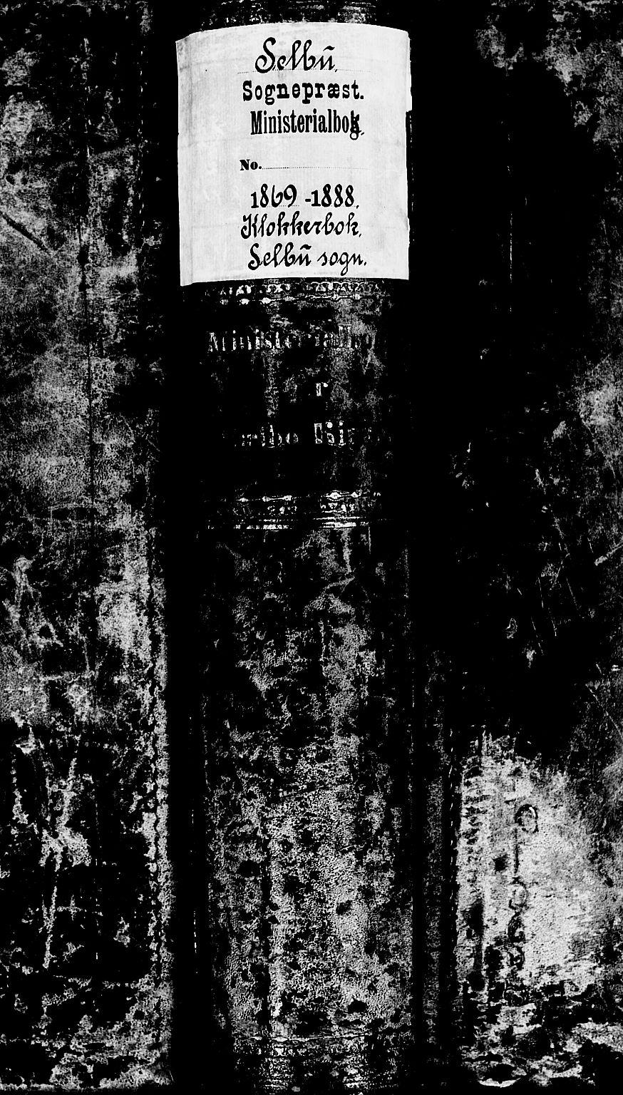 SAT, Ministerialprotokoller, klokkerbøker og fødselsregistre - Sør-Trøndelag, 695/L1156: Klokkerbok nr. 695C07, 1869-1888