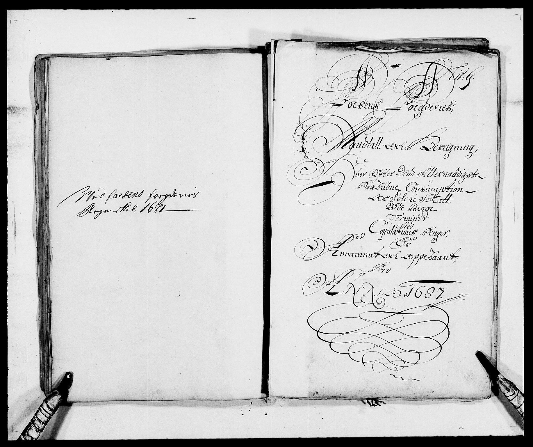 RA, Rentekammeret inntil 1814, Reviderte regnskaper, Fogderegnskap, R57/L3845: Fogderegnskap Fosen, 1687, s. 68
