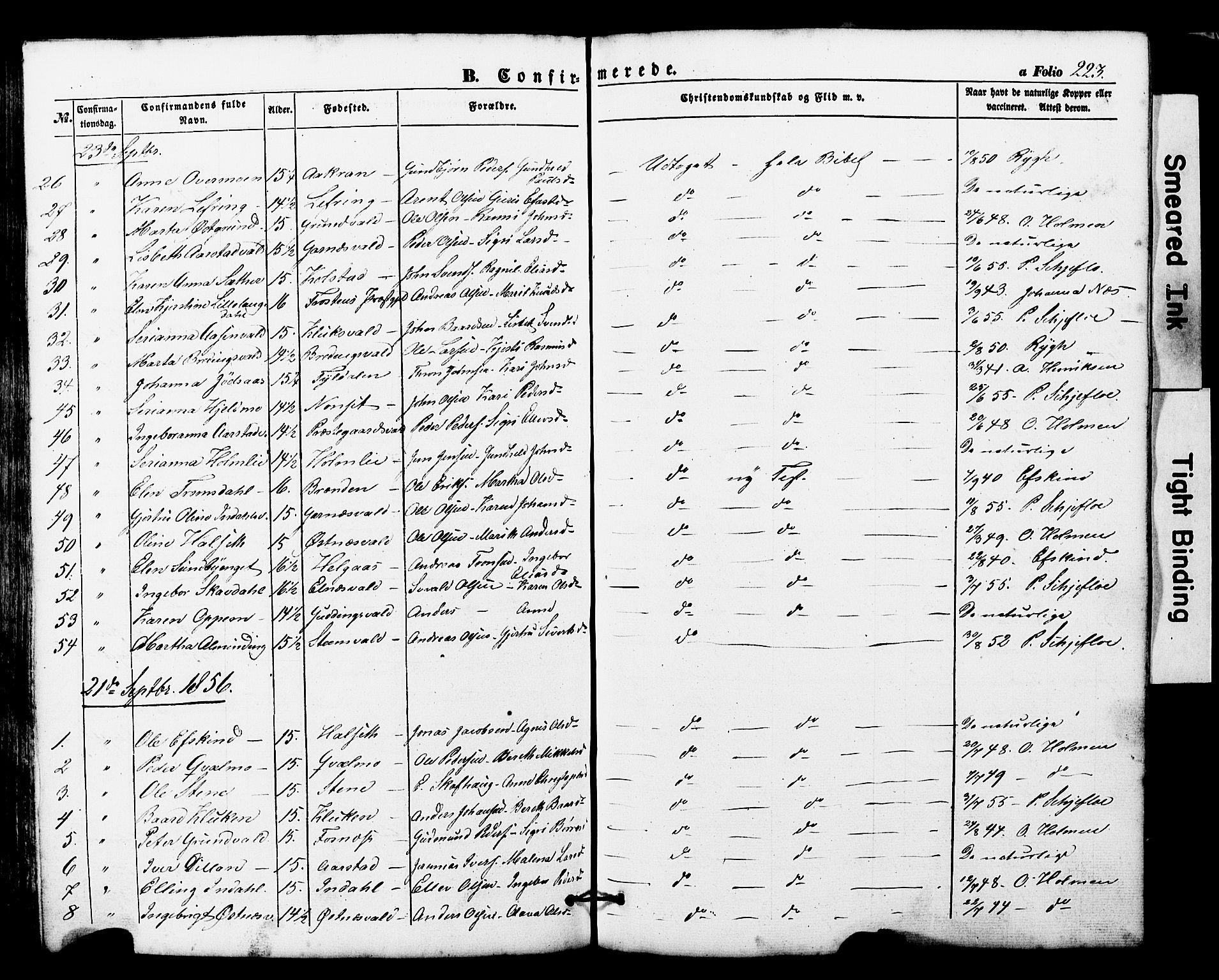 SAT, Ministerialprotokoller, klokkerbøker og fødselsregistre - Nord-Trøndelag, 724/L0268: Klokkerbok nr. 724C04, 1846-1878, s. 223