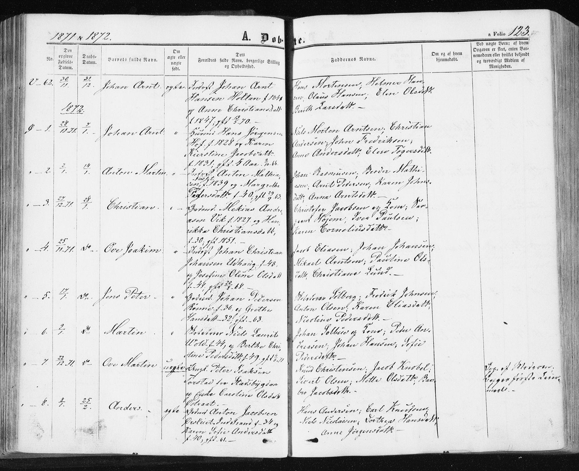 SAT, Ministerialprotokoller, klokkerbøker og fødselsregistre - Sør-Trøndelag, 659/L0737: Ministerialbok nr. 659A07, 1857-1875, s. 123