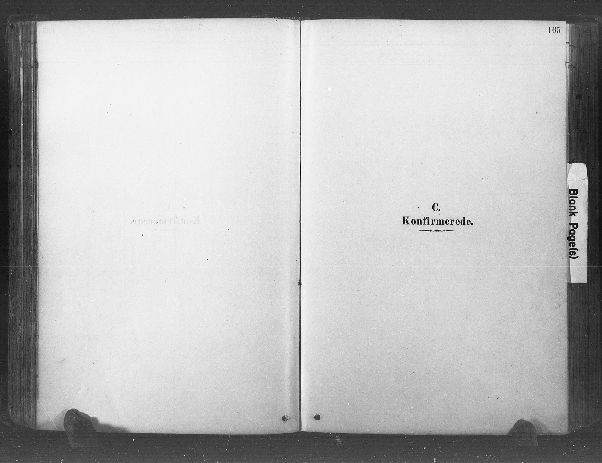 SAO, Råde prestekontor kirkebøker, F/Fa/L0007: Ministerialbok nr. 7, 1878-1902, s. 165