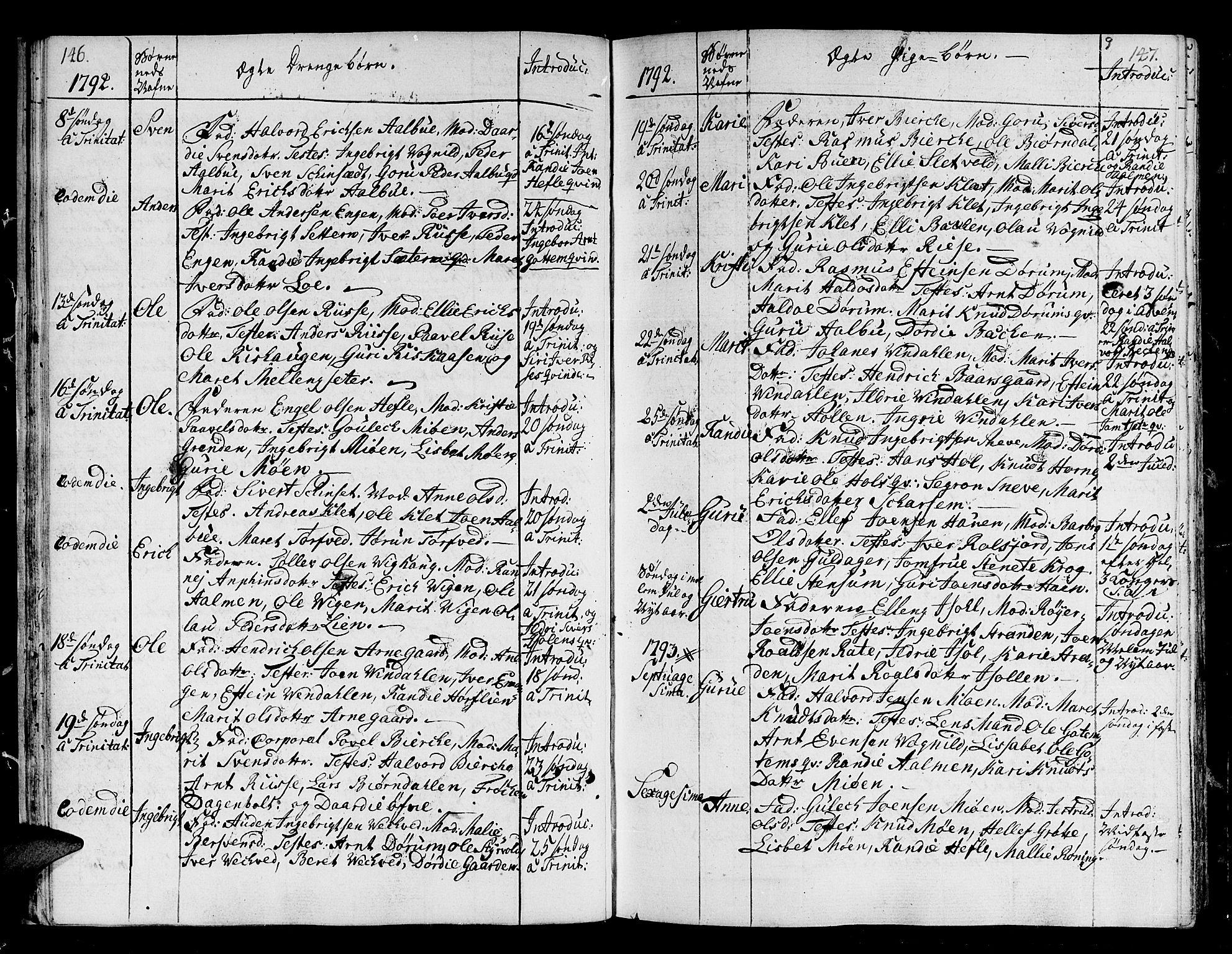 SAT, Ministerialprotokoller, klokkerbøker og fødselsregistre - Sør-Trøndelag, 678/L0893: Ministerialbok nr. 678A03, 1792-1805, s. 146-147