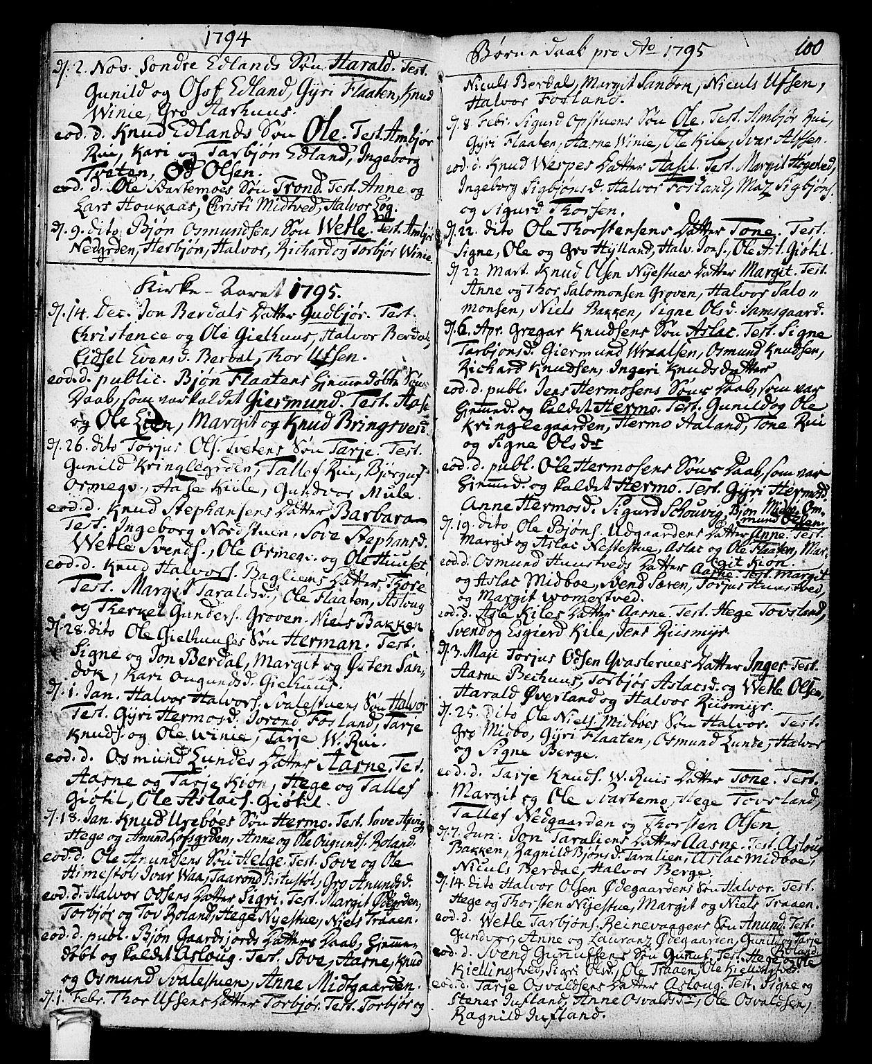 SAKO, Vinje kirkebøker, F/Fa/L0002: Ministerialbok nr. I 2, 1767-1814, s. 100