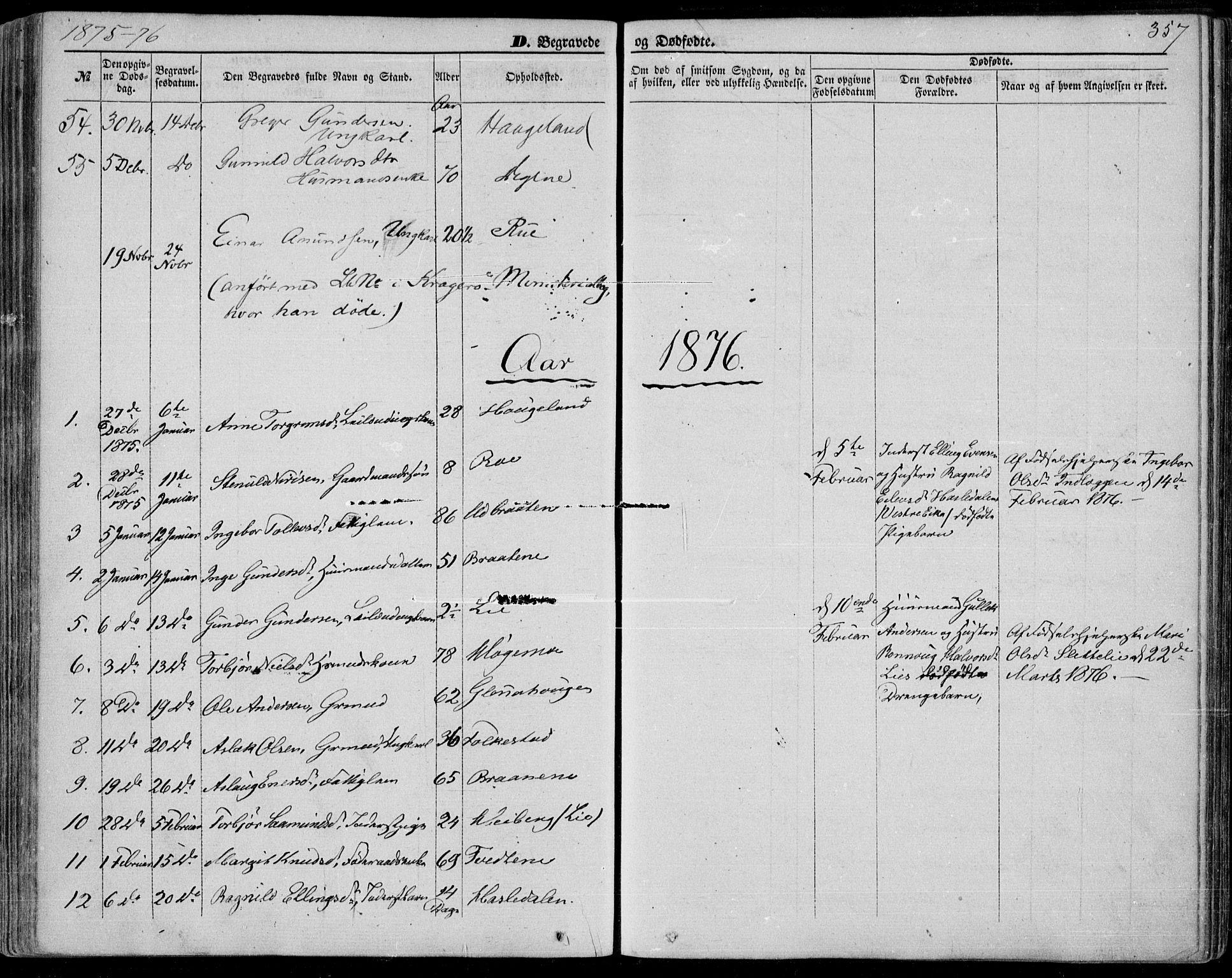 SAKO, Bø kirkebøker, F/Fa/L0009: Ministerialbok nr. 9, 1862-1879, s. 357