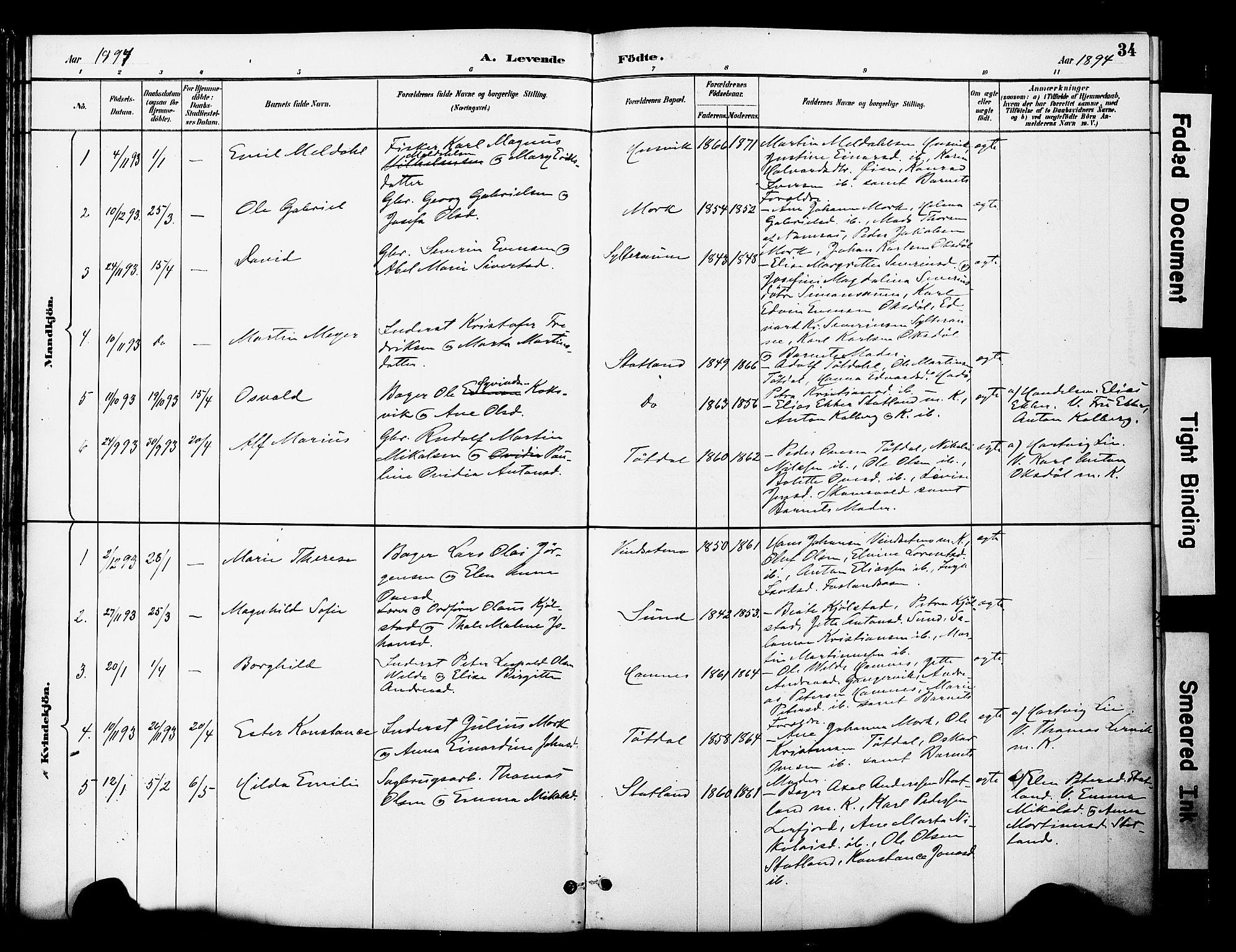 SAT, Ministerialprotokoller, klokkerbøker og fødselsregistre - Nord-Trøndelag, 774/L0628: Ministerialbok nr. 774A02, 1887-1903, s. 34