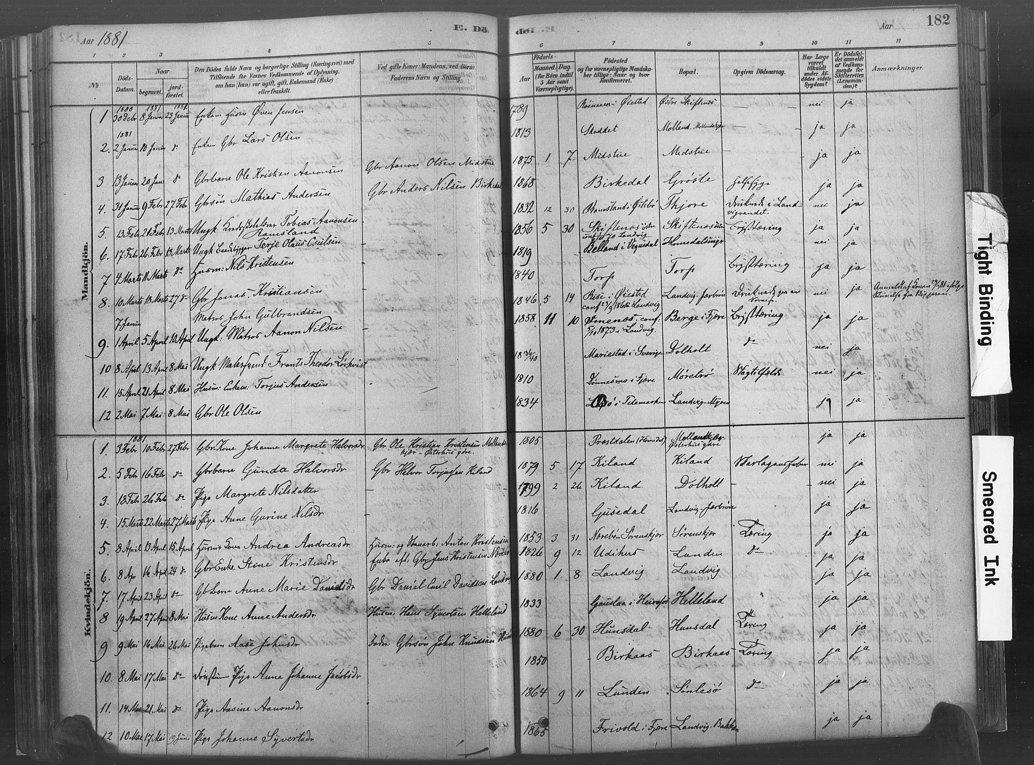 SAK, Hommedal sokneprestkontor, F/Fa/Fab/L0006: Ministerialbok nr. A 6, 1878-1897, s. 182