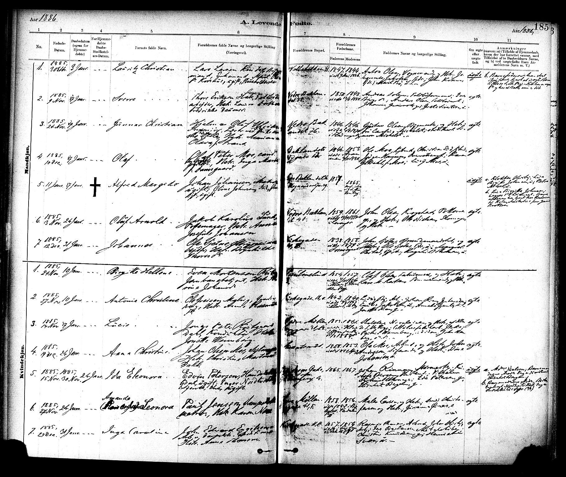 SAT, Ministerialprotokoller, klokkerbøker og fødselsregistre - Sør-Trøndelag, 604/L0188: Ministerialbok nr. 604A09, 1878-1892, s. 185