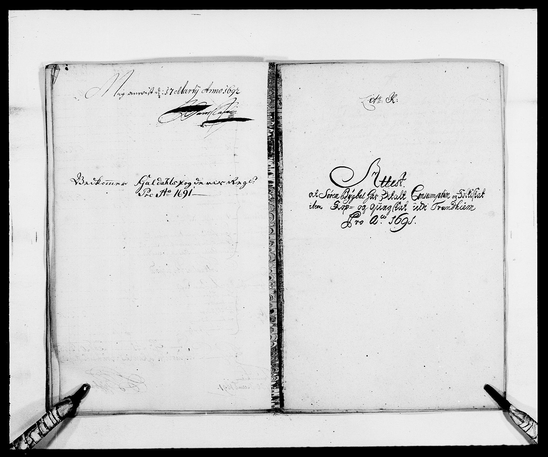 RA, Rentekammeret inntil 1814, Reviderte regnskaper, Fogderegnskap, R59/L3941: Fogderegnskap Gauldal, 1691, s. 113