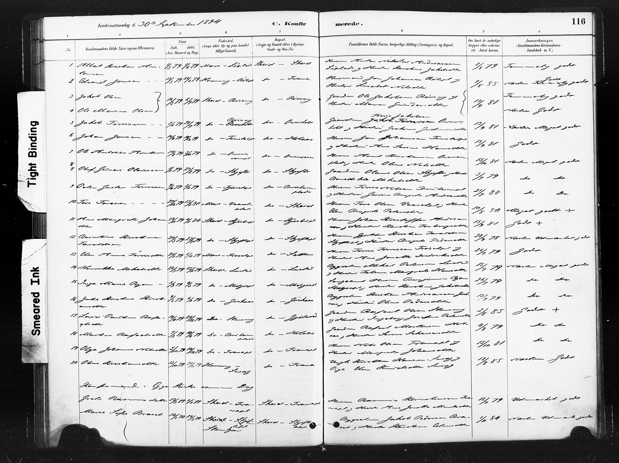 SAT, Ministerialprotokoller, klokkerbøker og fødselsregistre - Nord-Trøndelag, 736/L0361: Ministerialbok nr. 736A01, 1884-1906, s. 116