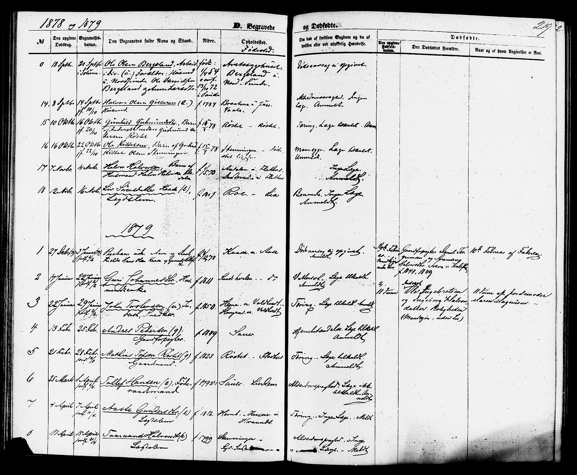 SAKO, Sauherad kirkebøker, F/Fa/L0008: Ministerialbok nr. I 8, 1873-1886, s. 219