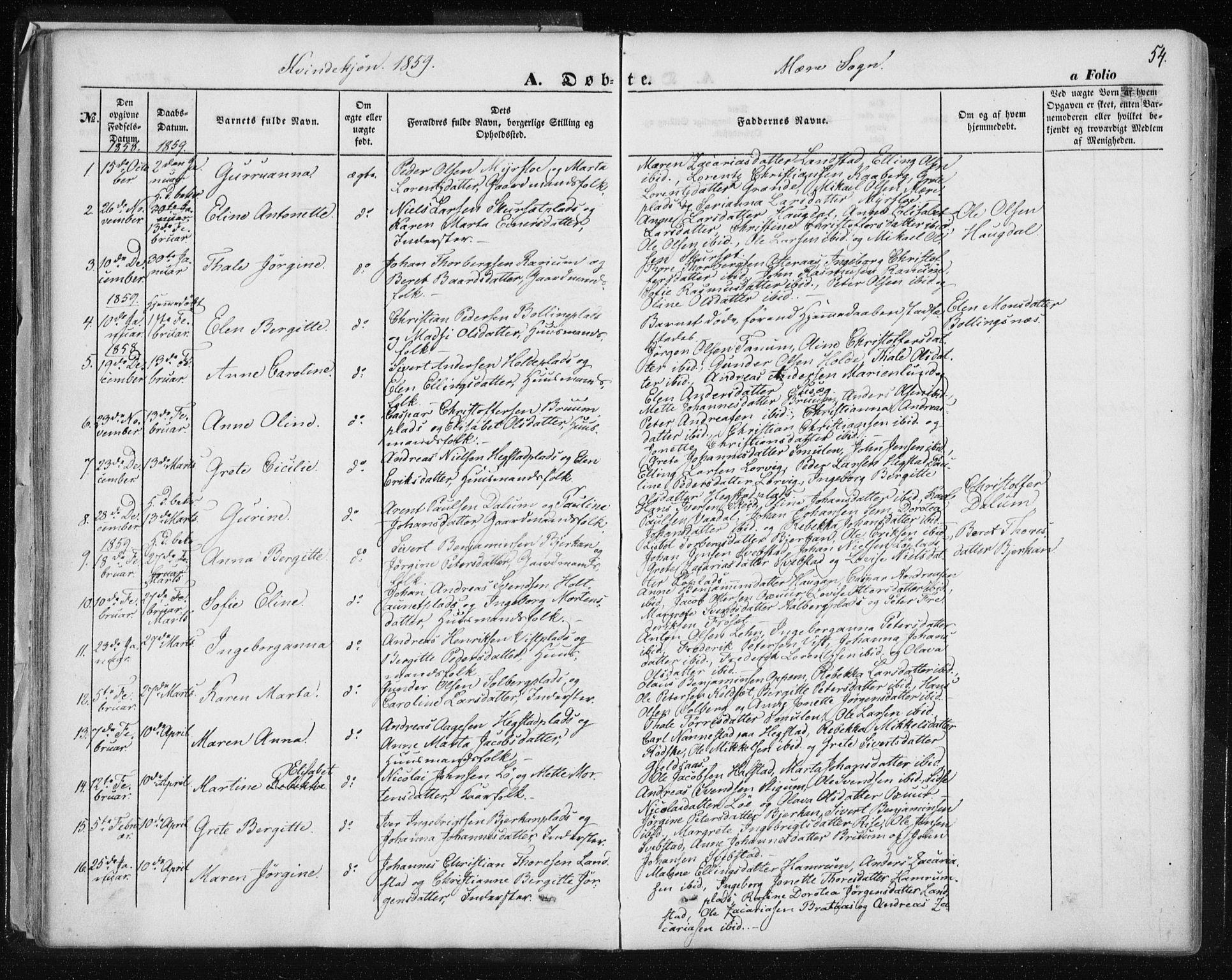 SAT, Ministerialprotokoller, klokkerbøker og fødselsregistre - Nord-Trøndelag, 735/L0342: Ministerialbok nr. 735A07 /1, 1849-1862, s. 54