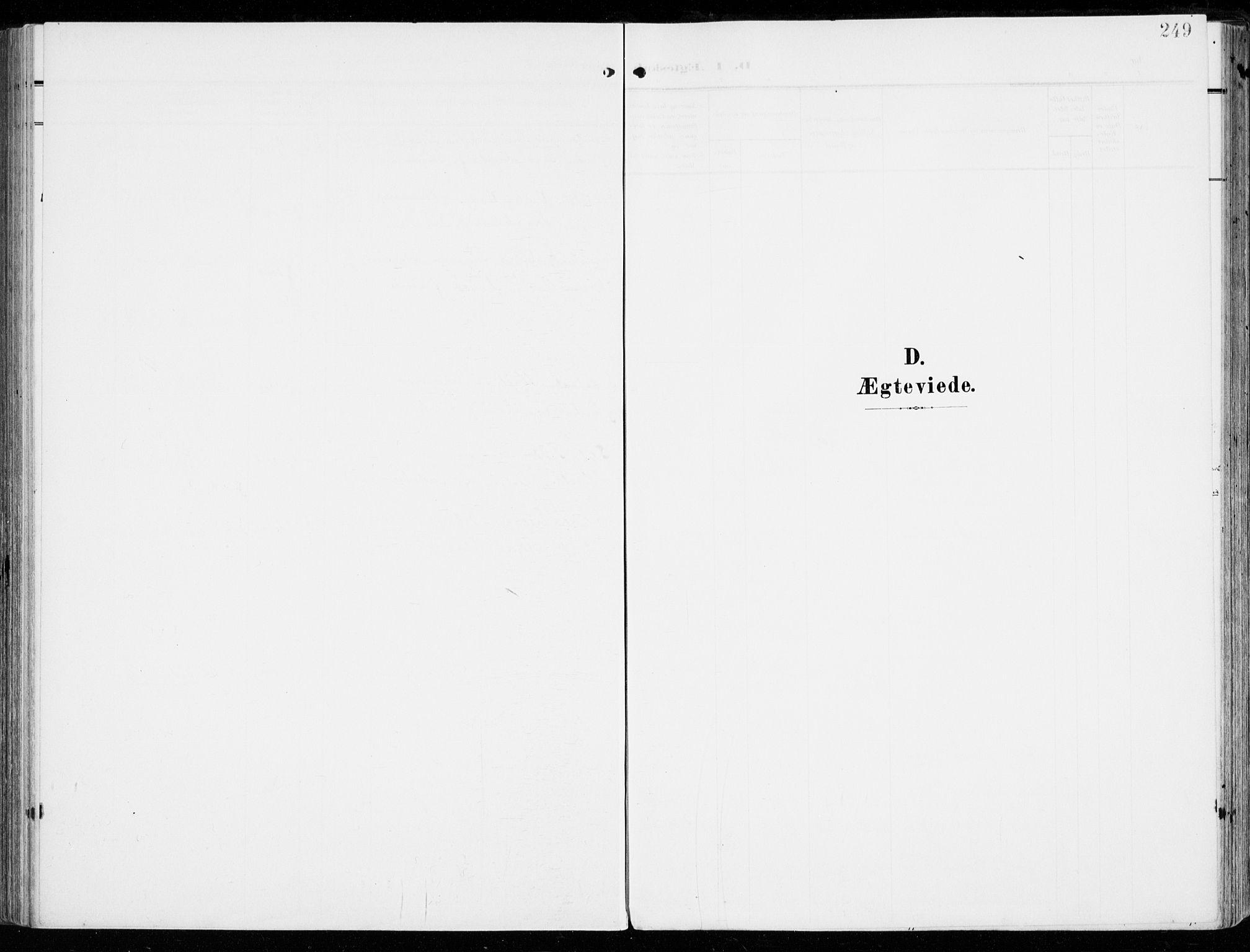 SAKO, Tjølling kirkebøker, F/Fa/L0010: Ministerialbok nr. 10, 1906-1923, s. 249