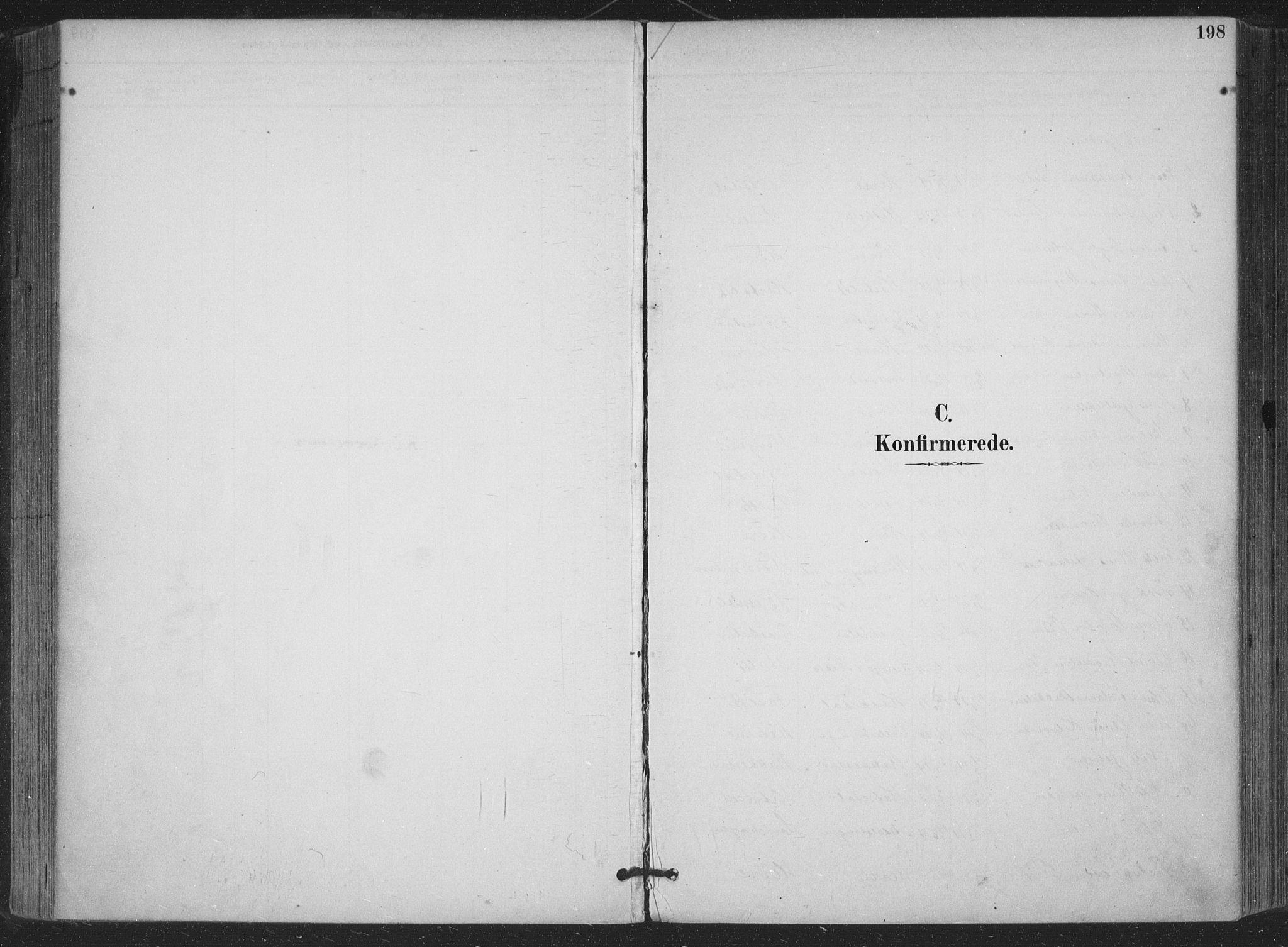 SAKO, Bamble kirkebøker, F/Fa/L0008: Ministerialbok nr. I 8, 1888-1900, s. 198