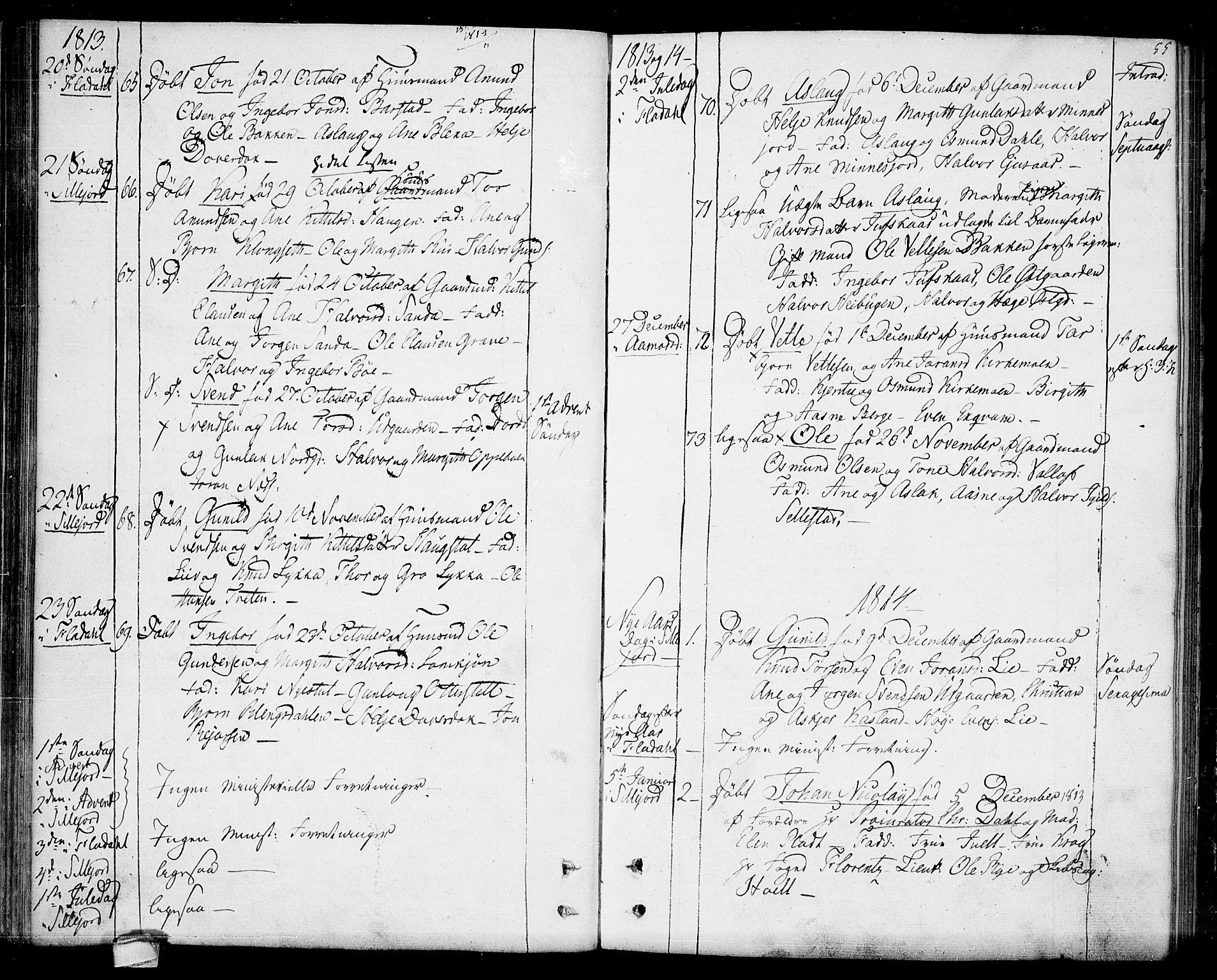 SAKO, Seljord kirkebøker, F/Fa/L0009: Ministerialbok nr. I 9, 1801-1814, s. 55