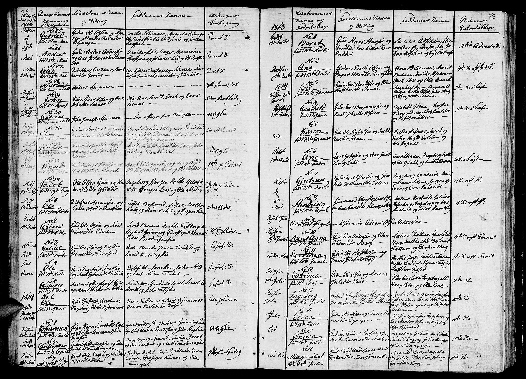 SAT, Ministerialprotokoller, klokkerbøker og fødselsregistre - Sør-Trøndelag, 646/L0607: Ministerialbok nr. 646A05, 1806-1815, s. 72-73