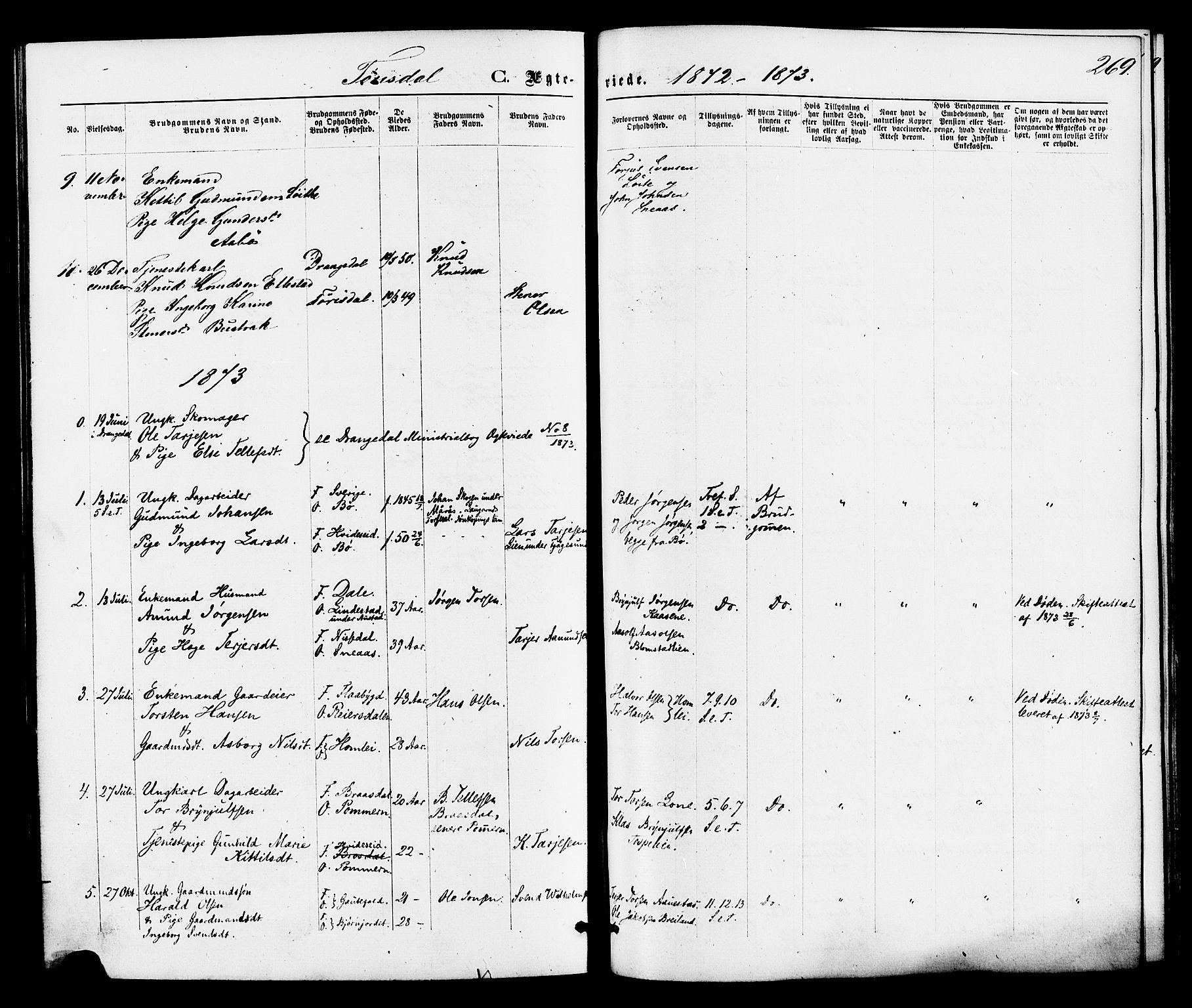 SAKO, Drangedal kirkebøker, F/Fa/L0009: Ministerialbok nr. 9 /2, 1872-1884, s. 269