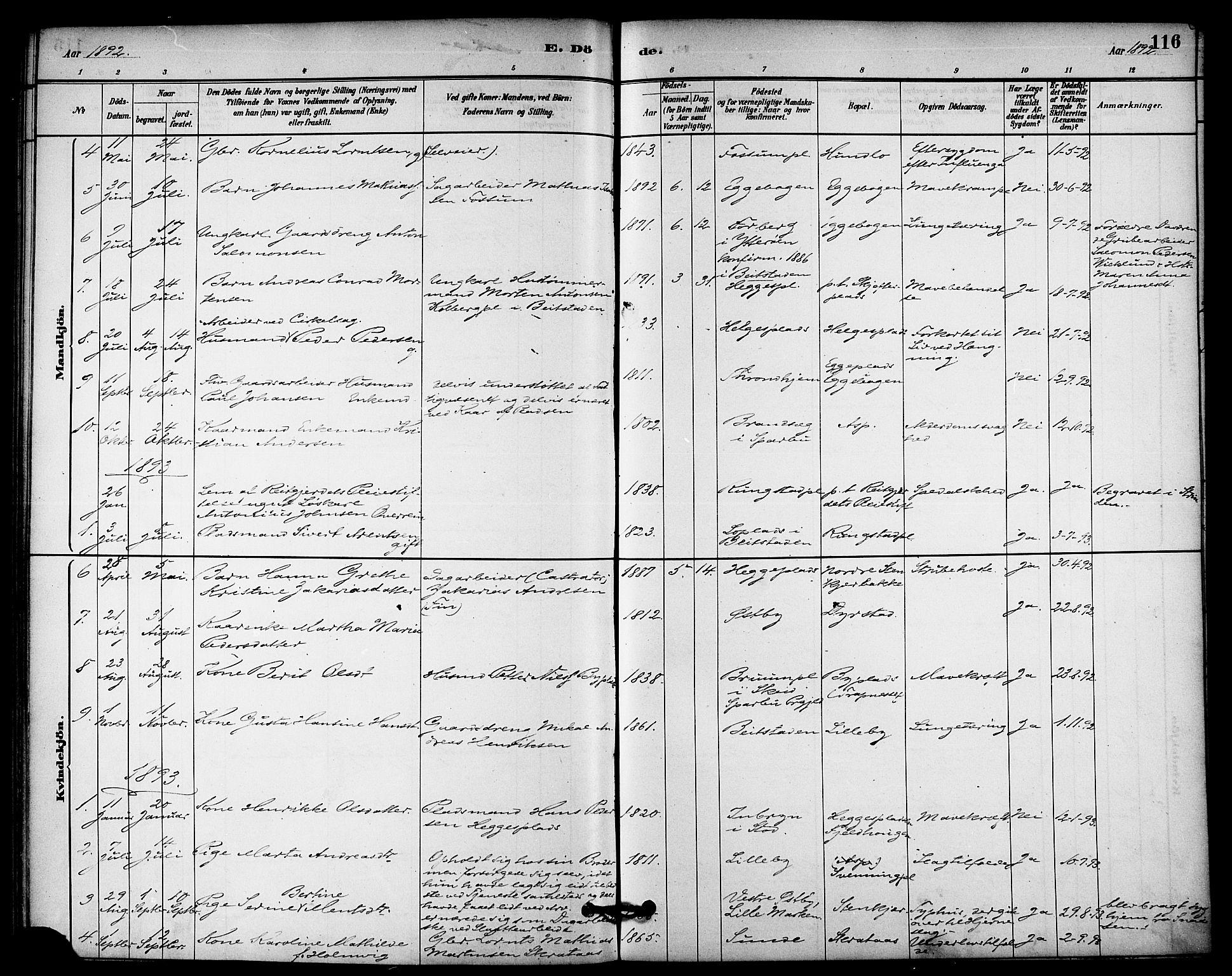 SAT, Ministerialprotokoller, klokkerbøker og fødselsregistre - Nord-Trøndelag, 740/L0378: Ministerialbok nr. 740A01, 1881-1895, s. 116
