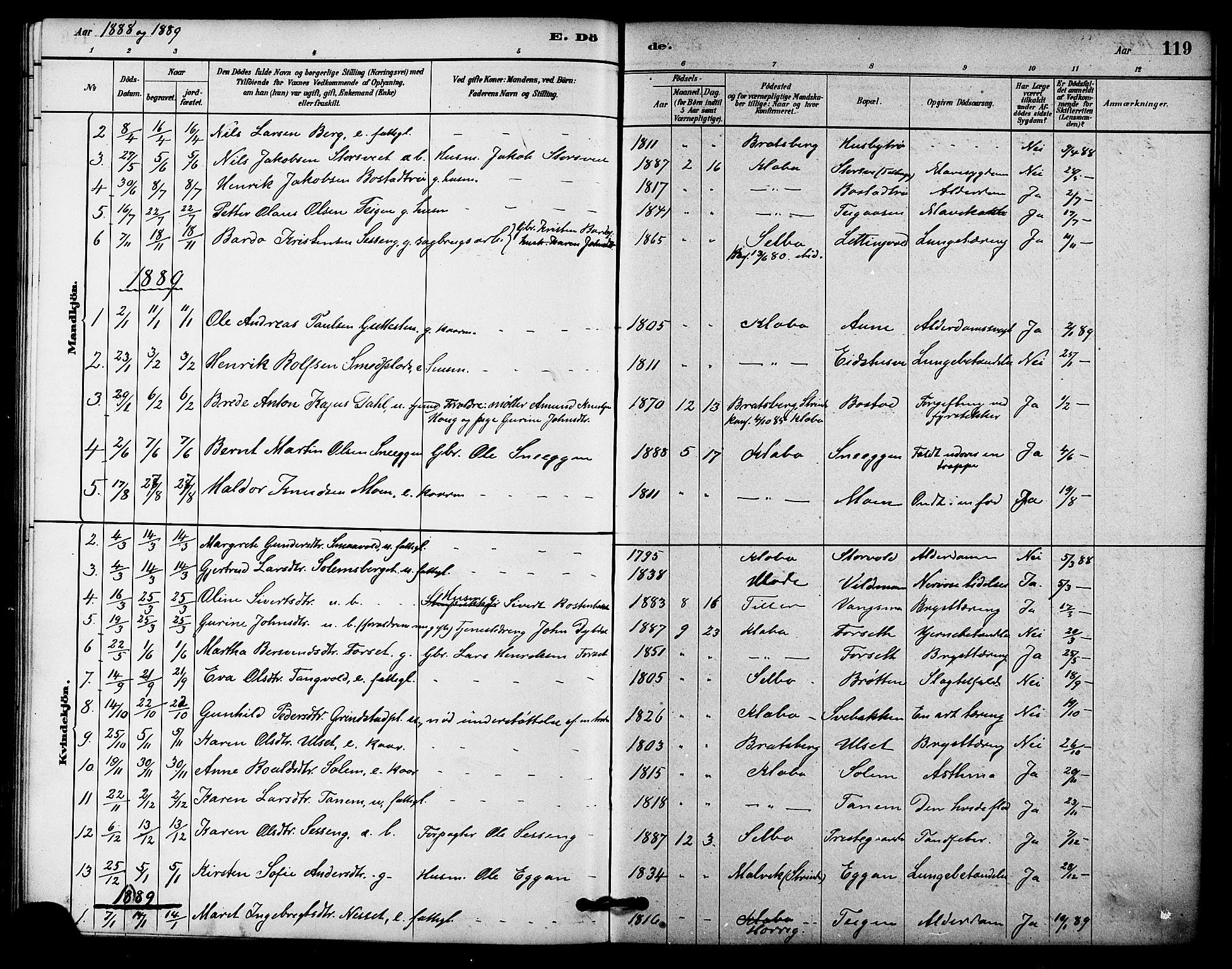 SAT, Ministerialprotokoller, klokkerbøker og fødselsregistre - Sør-Trøndelag, 618/L0444: Ministerialbok nr. 618A07, 1880-1898, s. 119
