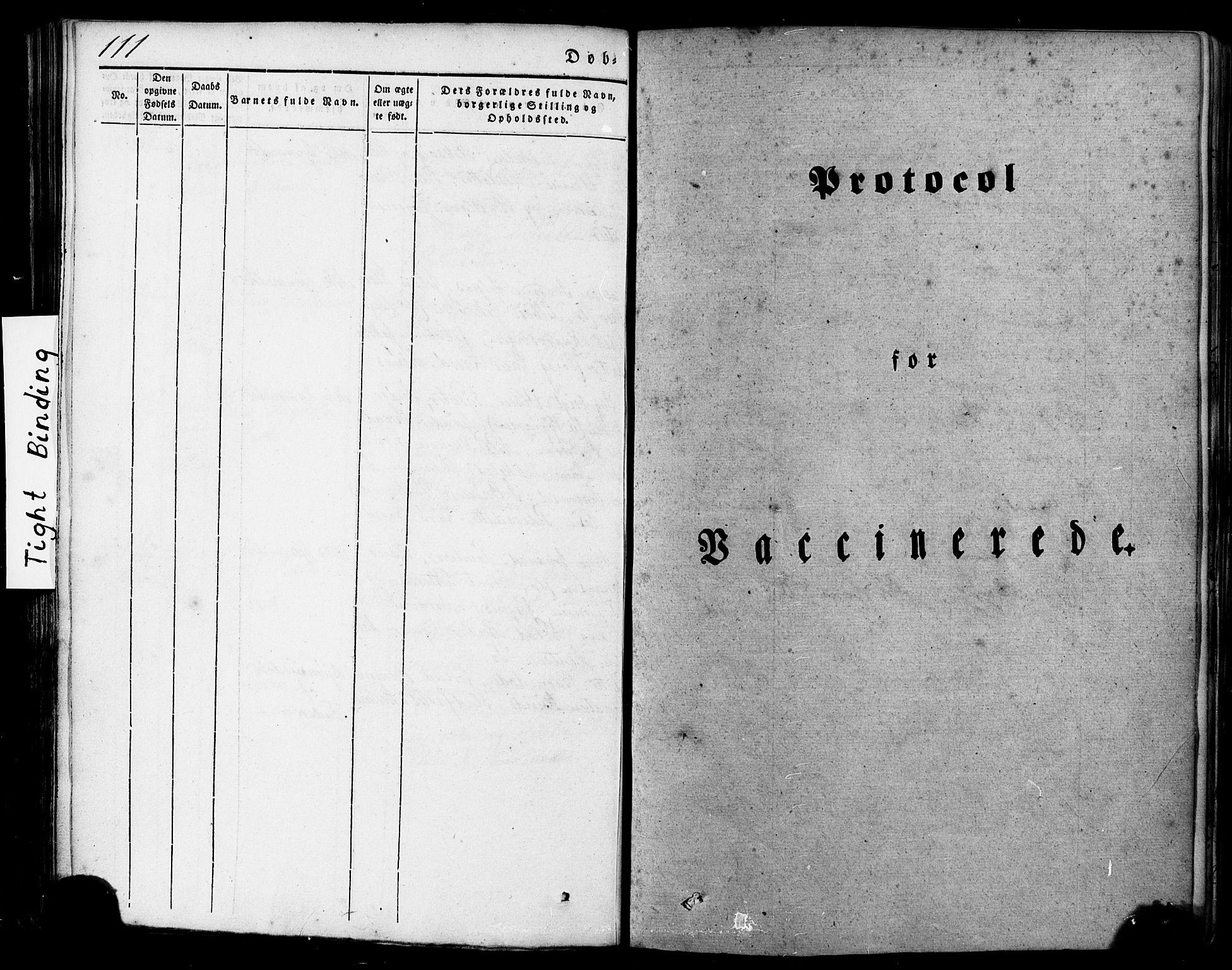 SAT, Ministerialprotokoller, klokkerbøker og fødselsregistre - Nordland, 839/L0567: Ministerialbok nr. 839A04, 1863-1879, s. 111