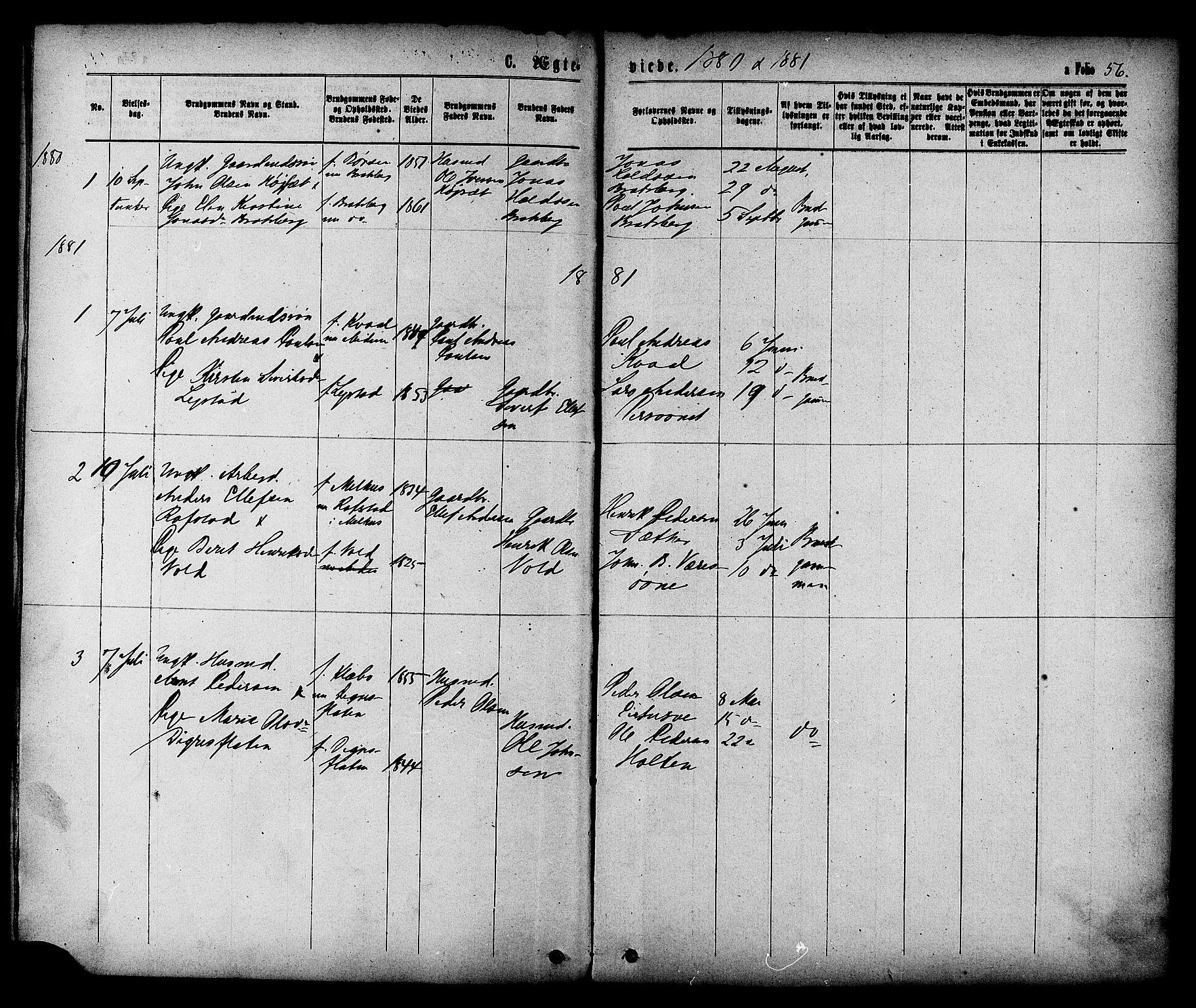SAT, Ministerialprotokoller, klokkerbøker og fødselsregistre - Sør-Trøndelag, 608/L0334: Ministerialbok nr. 608A03, 1877-1886, s. 56