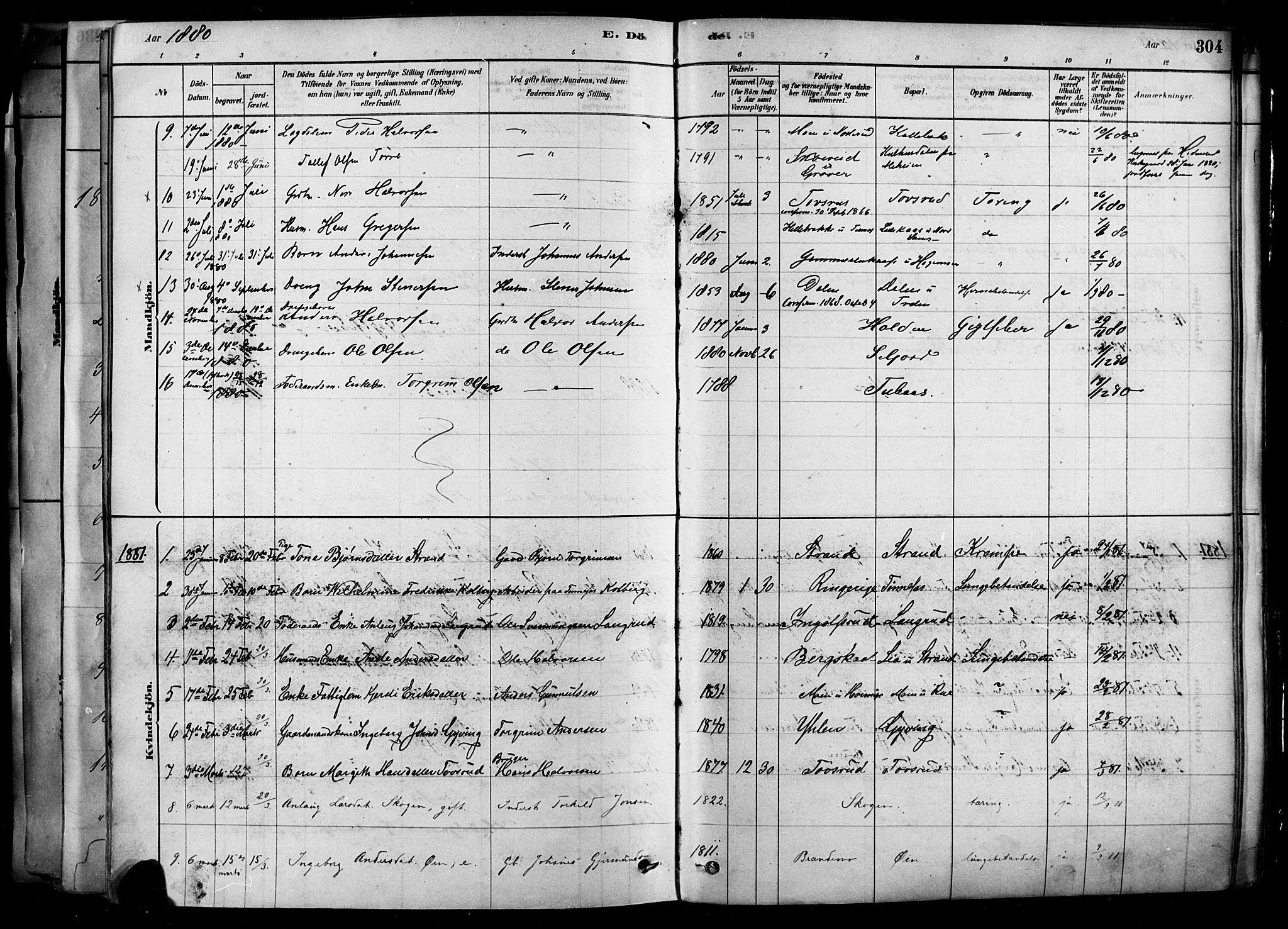 SAKO, Heddal kirkebøker, F/Fa/L0008: Ministerialbok nr. I 8, 1878-1903, s. 304
