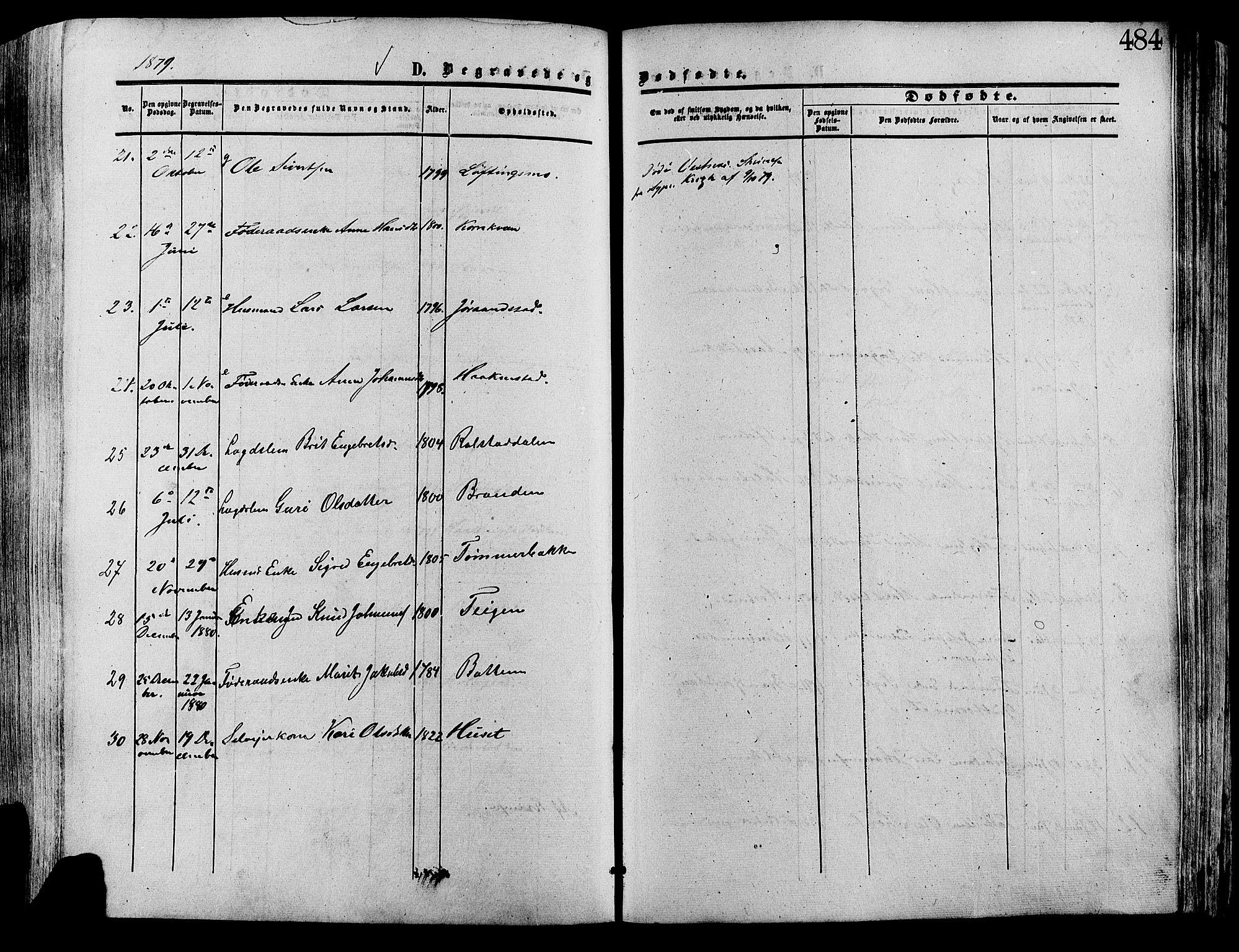 SAH, Lesja prestekontor, Ministerialbok nr. 8, 1854-1880, s. 484