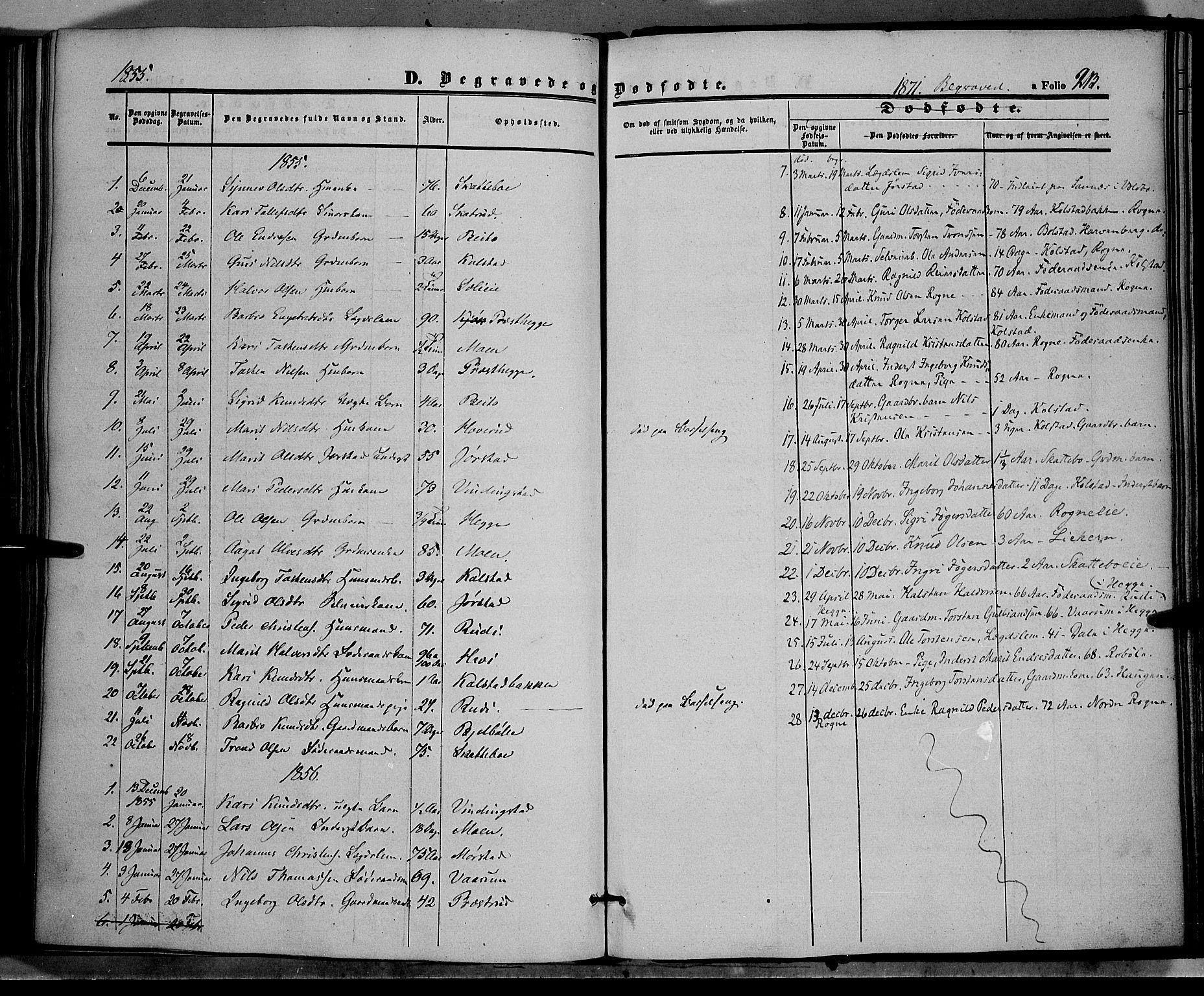 SAH, Øystre Slidre prestekontor, Ministerialbok nr. 1, 1849-1874, s. 213