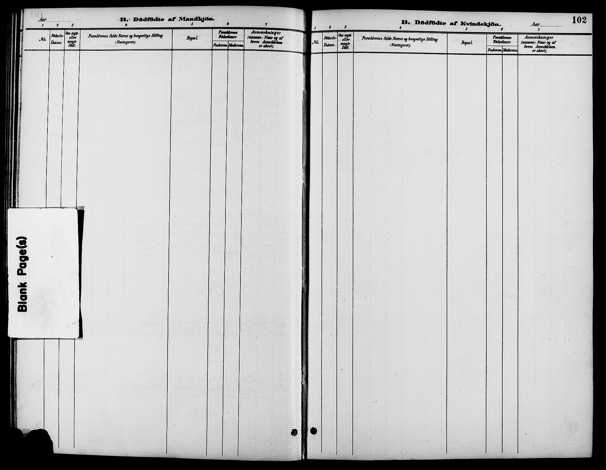 SAH, Biri prestekontor, Klokkerbok nr. 4, 1892-1909, s. 102
