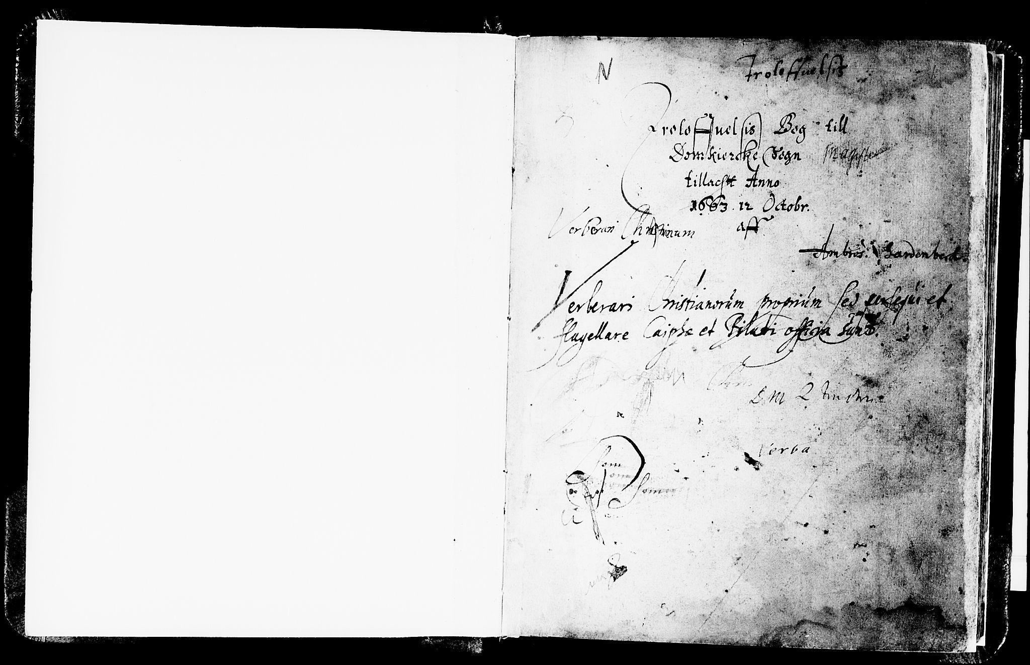 SAB, Domkirken Sokneprestembete, H/Haa/L0006: Ministerialbok nr. A 6, 1663-1683, s. 1