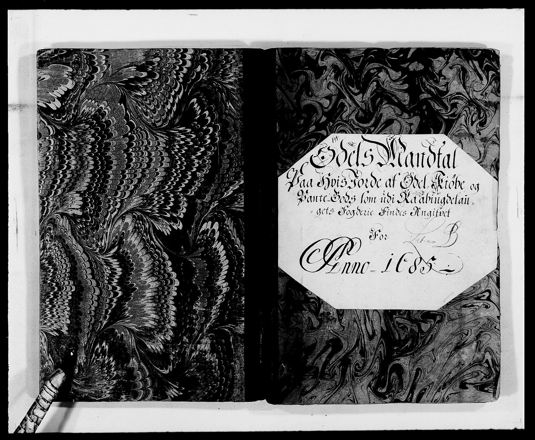 RA, Rentekammeret inntil 1814, Reviderte regnskaper, Fogderegnskap, R40/L2439: Fogderegnskap Råbyggelag, 1684-1685, s. 168