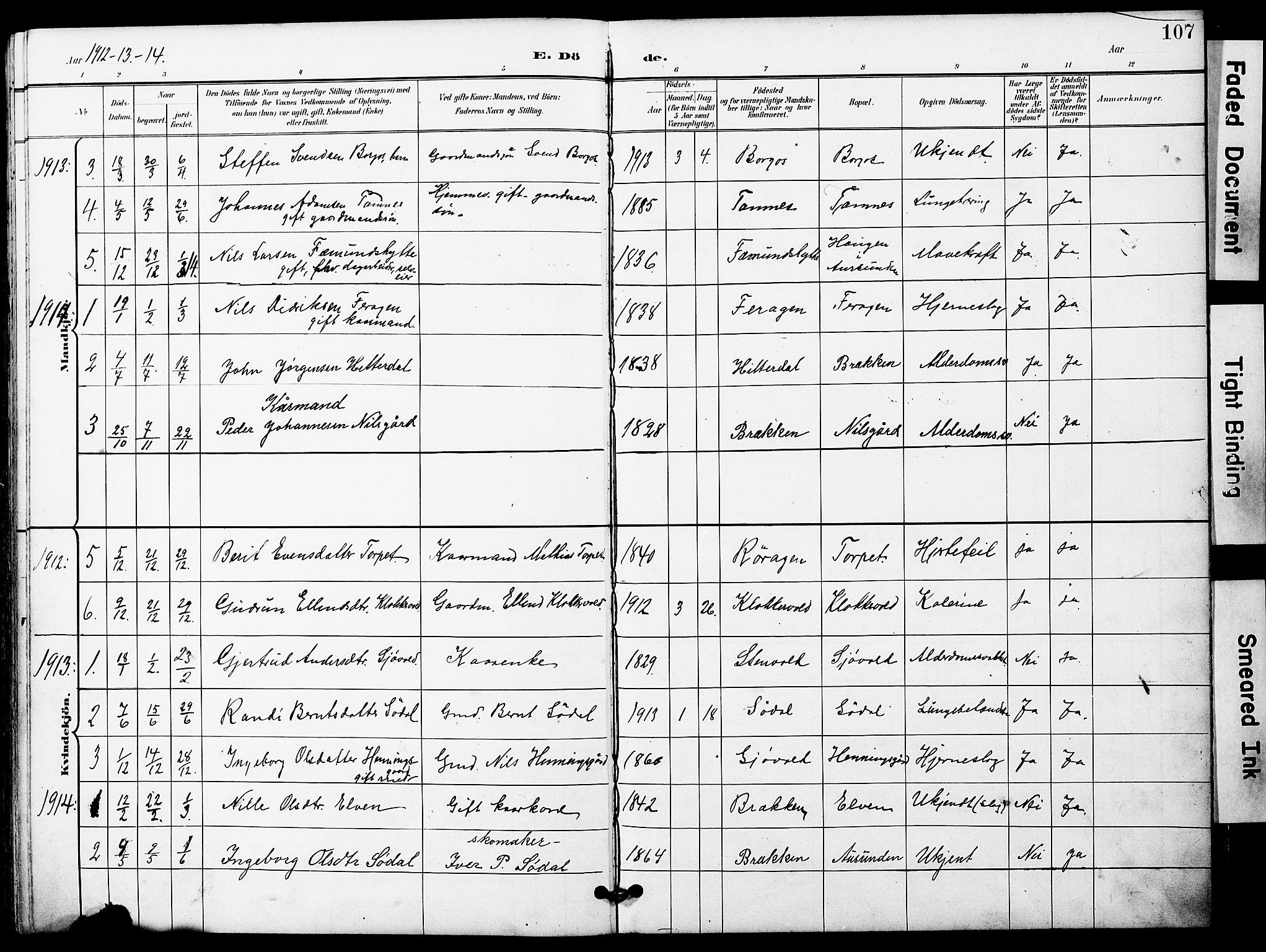 SAT, Ministerialprotokoller, klokkerbøker og fødselsregistre - Sør-Trøndelag, 683/L0950: Klokkerbok nr. 683C02, 1897-1918, s. 107