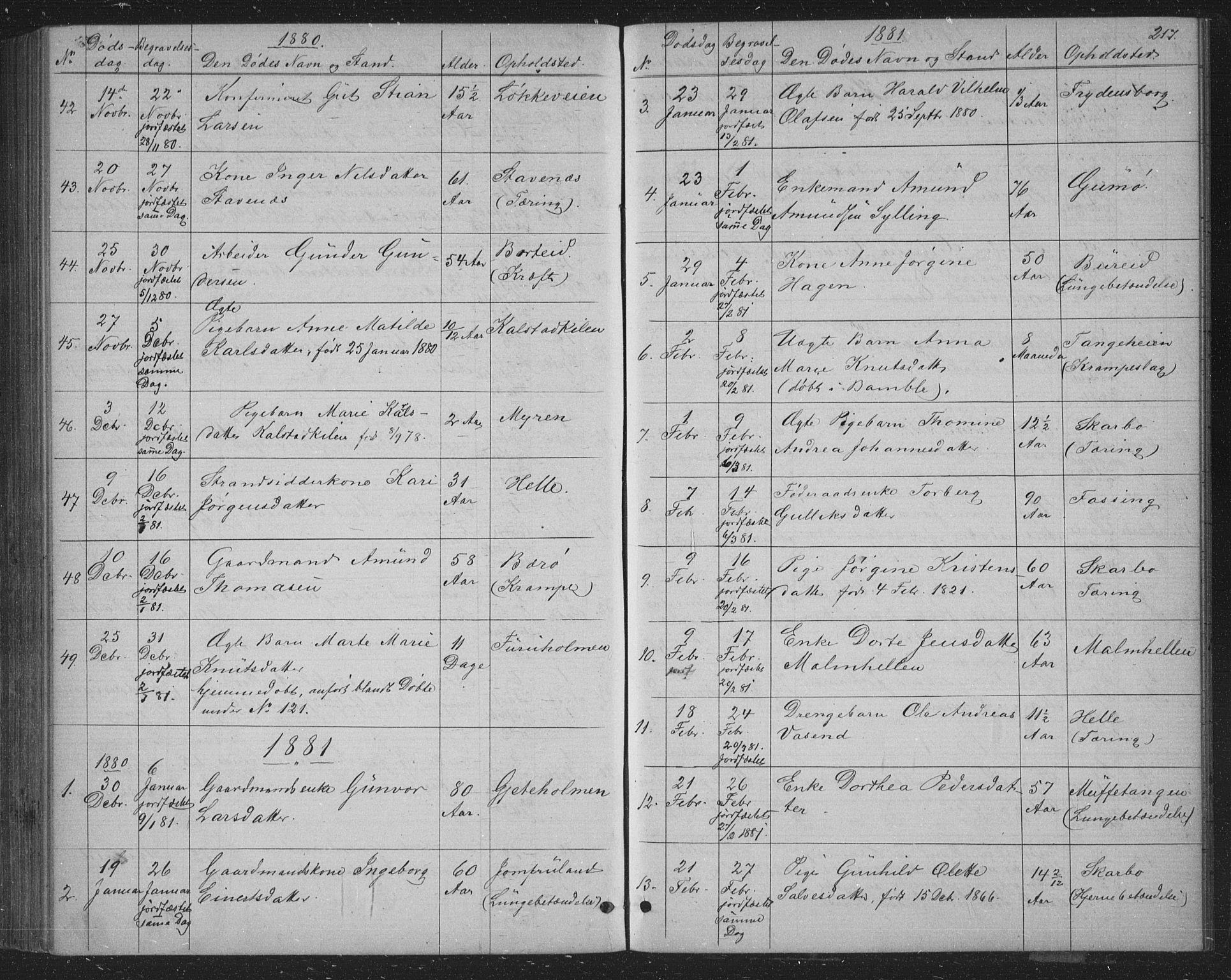 SAKO, Skåtøy kirkebøker, G/Ga/L0002: Klokkerbok nr. I 2, 1872-1884, s. 217
