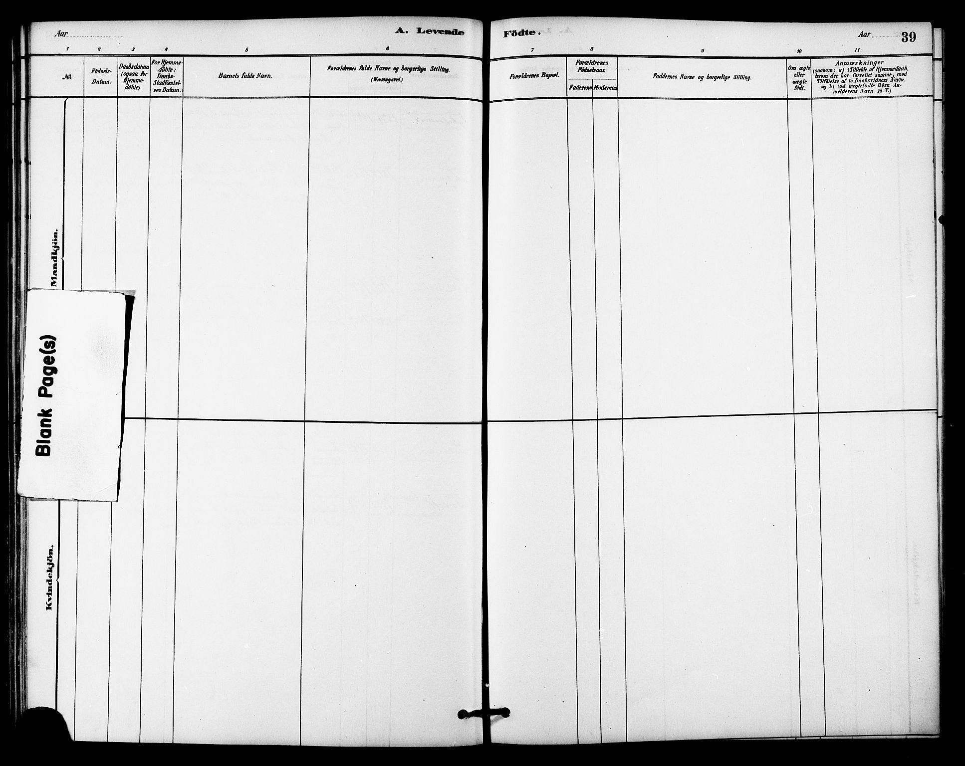 SAT, Ministerialprotokoller, klokkerbøker og fødselsregistre - Sør-Trøndelag, 618/L0444: Ministerialbok nr. 618A07, 1880-1898, s. 39