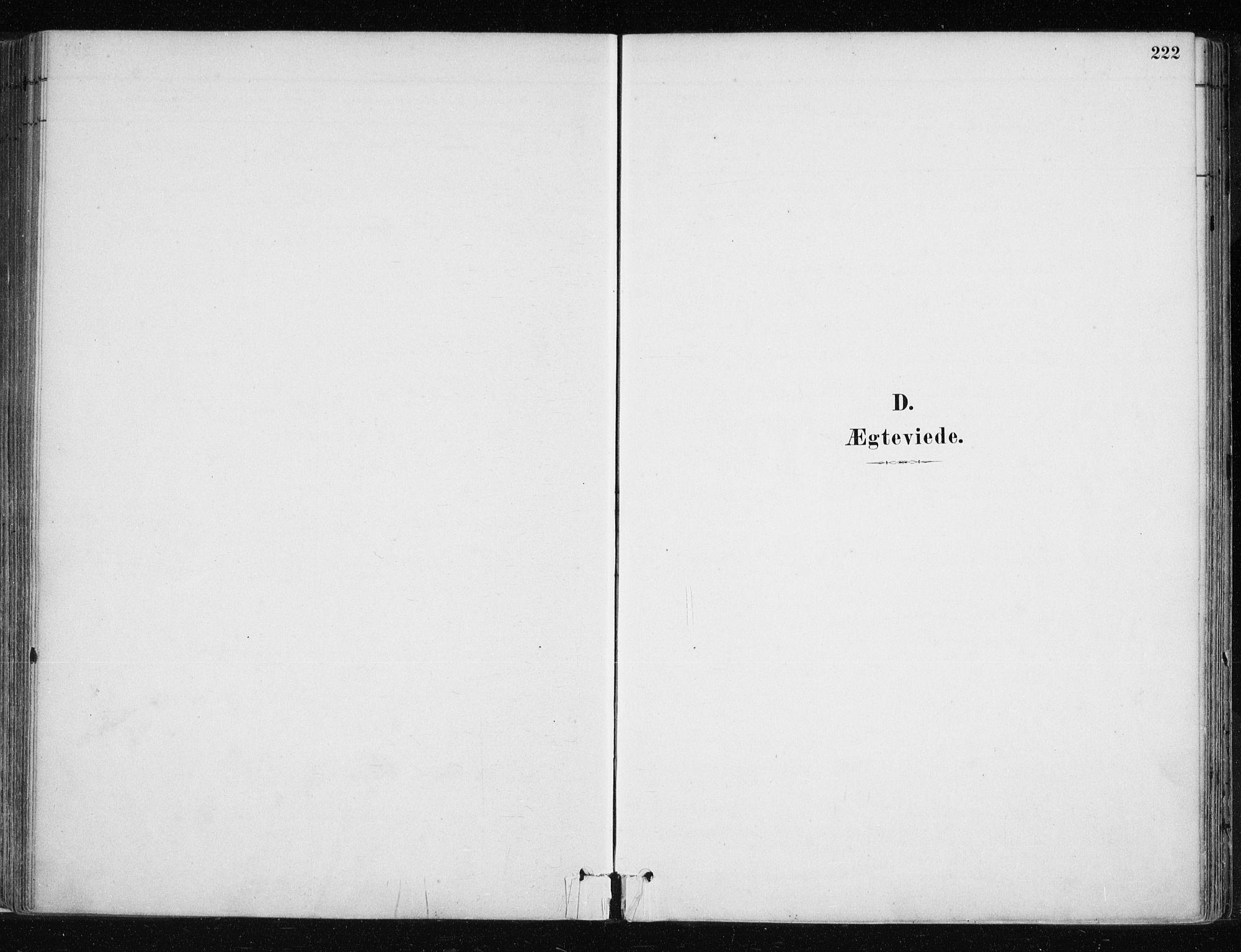 SATØ, Lyngen sokneprestembete, H/He/Hea/L0007kirke: Ministerialbok nr. 7, 1879-1890, s. 222
