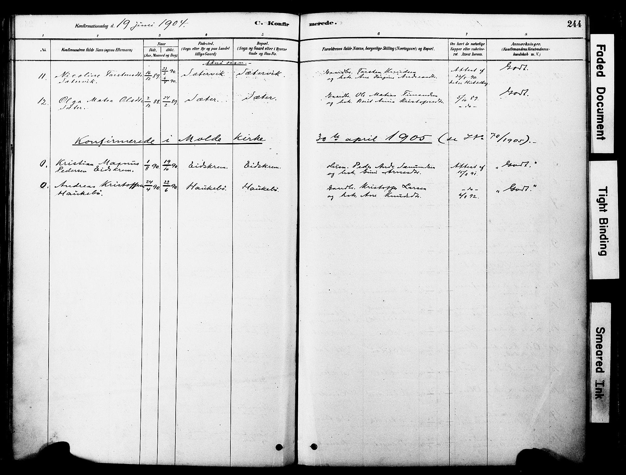 SAT, Ministerialprotokoller, klokkerbøker og fødselsregistre - Møre og Romsdal, 560/L0721: Ministerialbok nr. 560A05, 1878-1917, s. 244