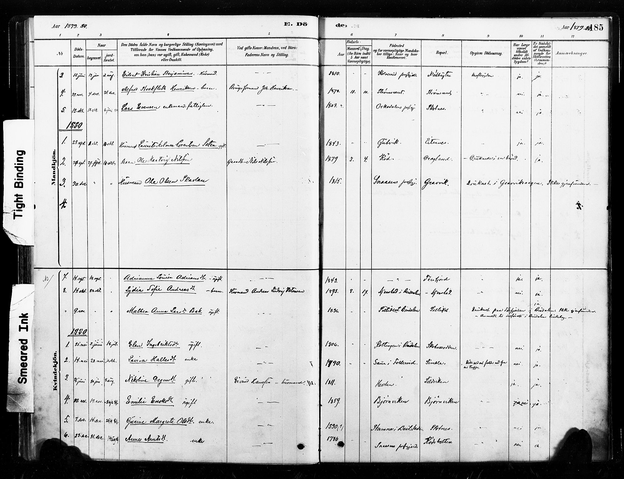 SAT, Ministerialprotokoller, klokkerbøker og fødselsregistre - Nord-Trøndelag, 789/L0705: Ministerialbok nr. 789A01, 1878-1910, s. 185