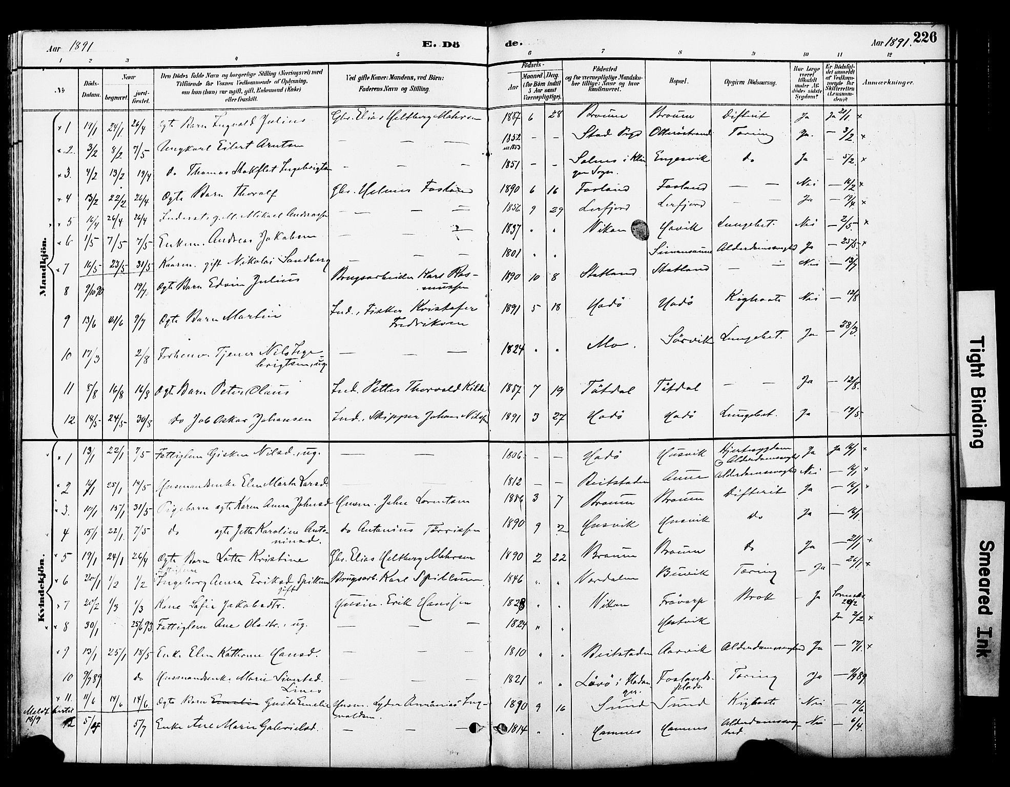SAT, Ministerialprotokoller, klokkerbøker og fødselsregistre - Nord-Trøndelag, 774/L0628: Ministerialbok nr. 774A02, 1887-1903, s. 226